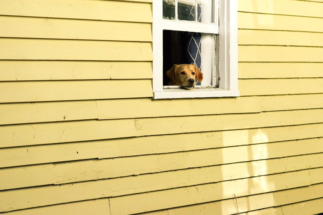 Raw Paw Privacy Policy