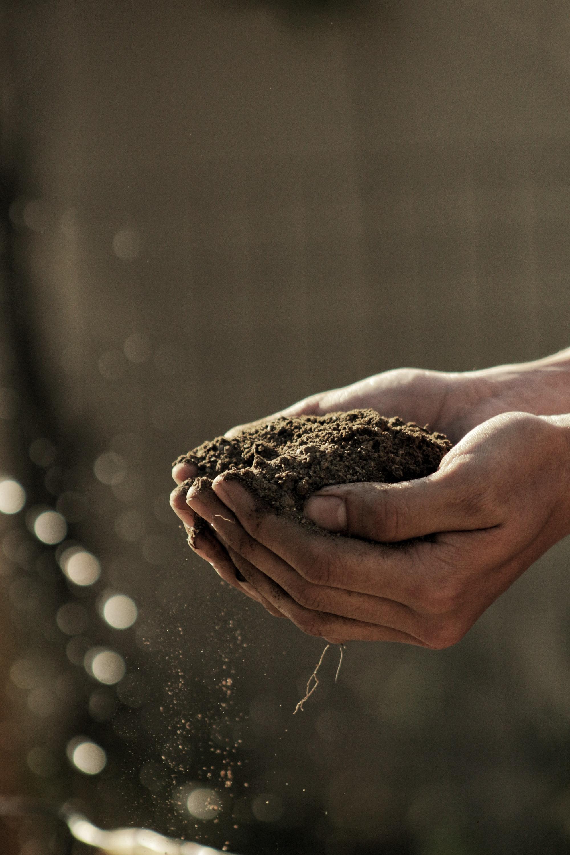 Agriculture's future is autonomous agriculture