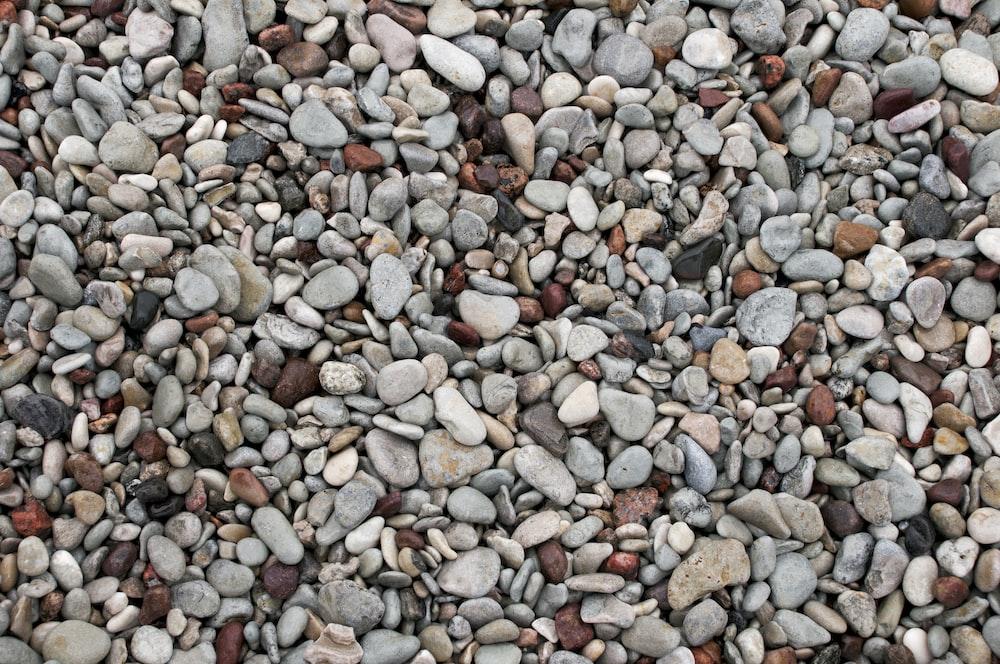 grey and white stones