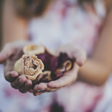 selective focus photography of a girl holding flowers