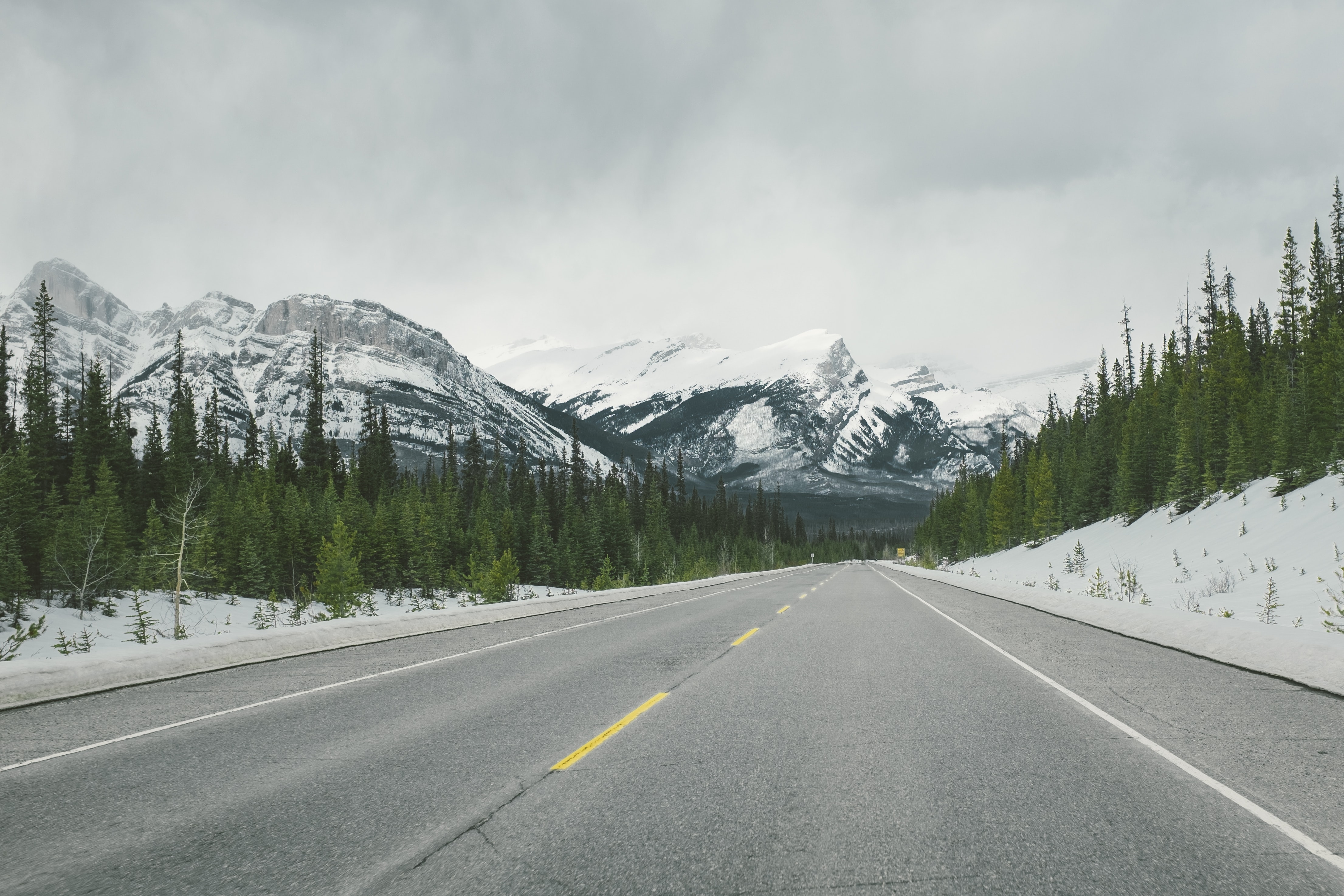 An empty asphalt road running towards snowy mountain peaks in Jasper