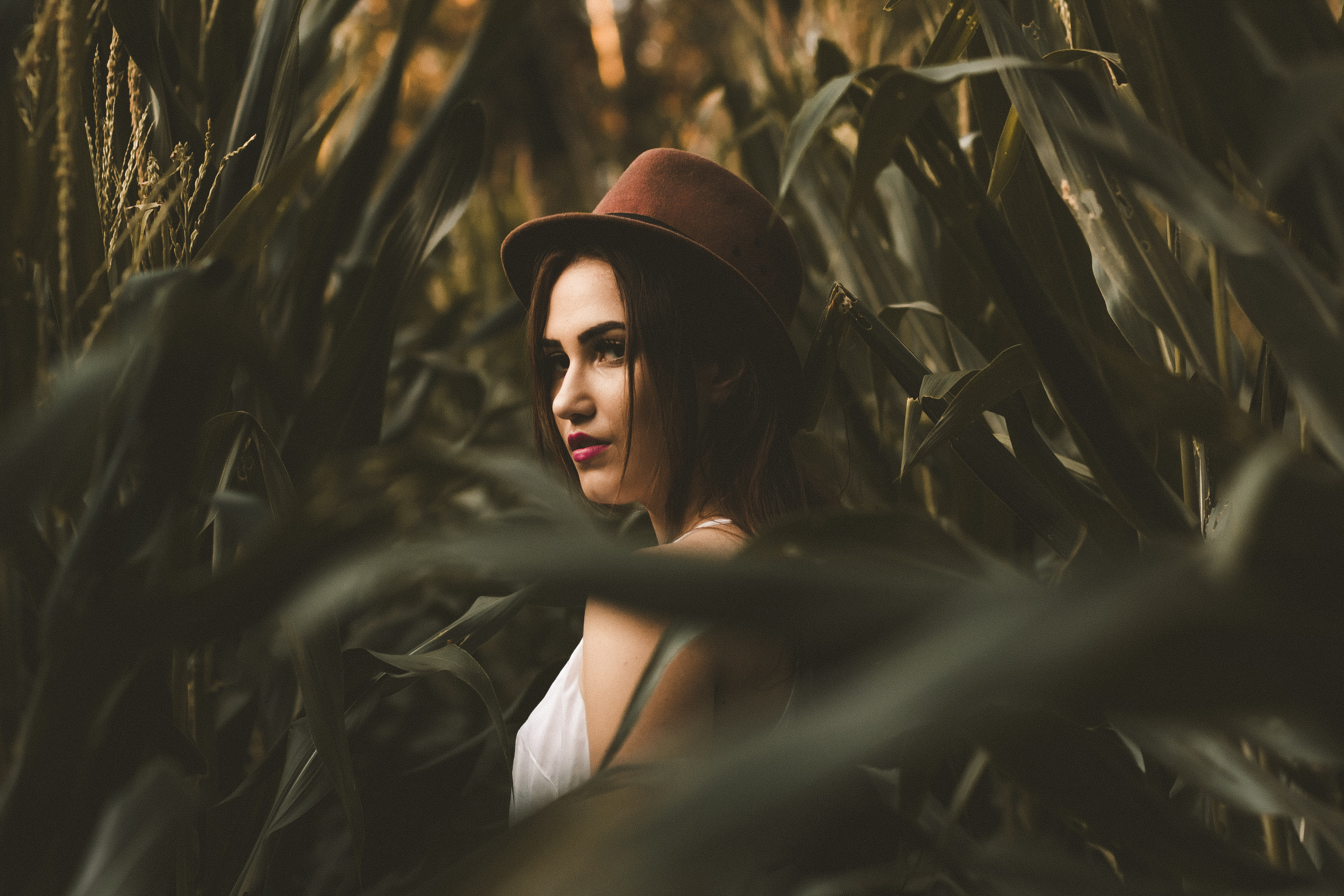 woman in white shirt with hat standing on corn field