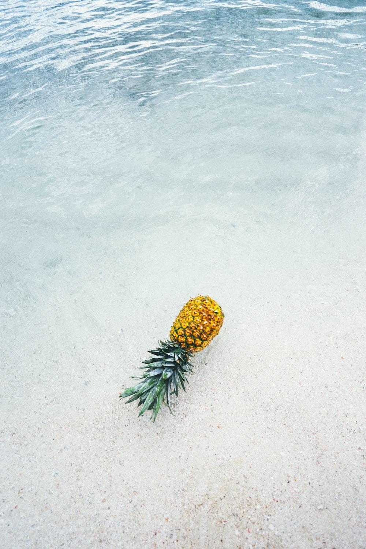 pineapple on seashore