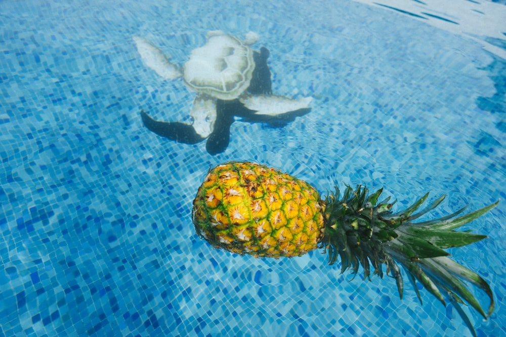 pineapple on body of water