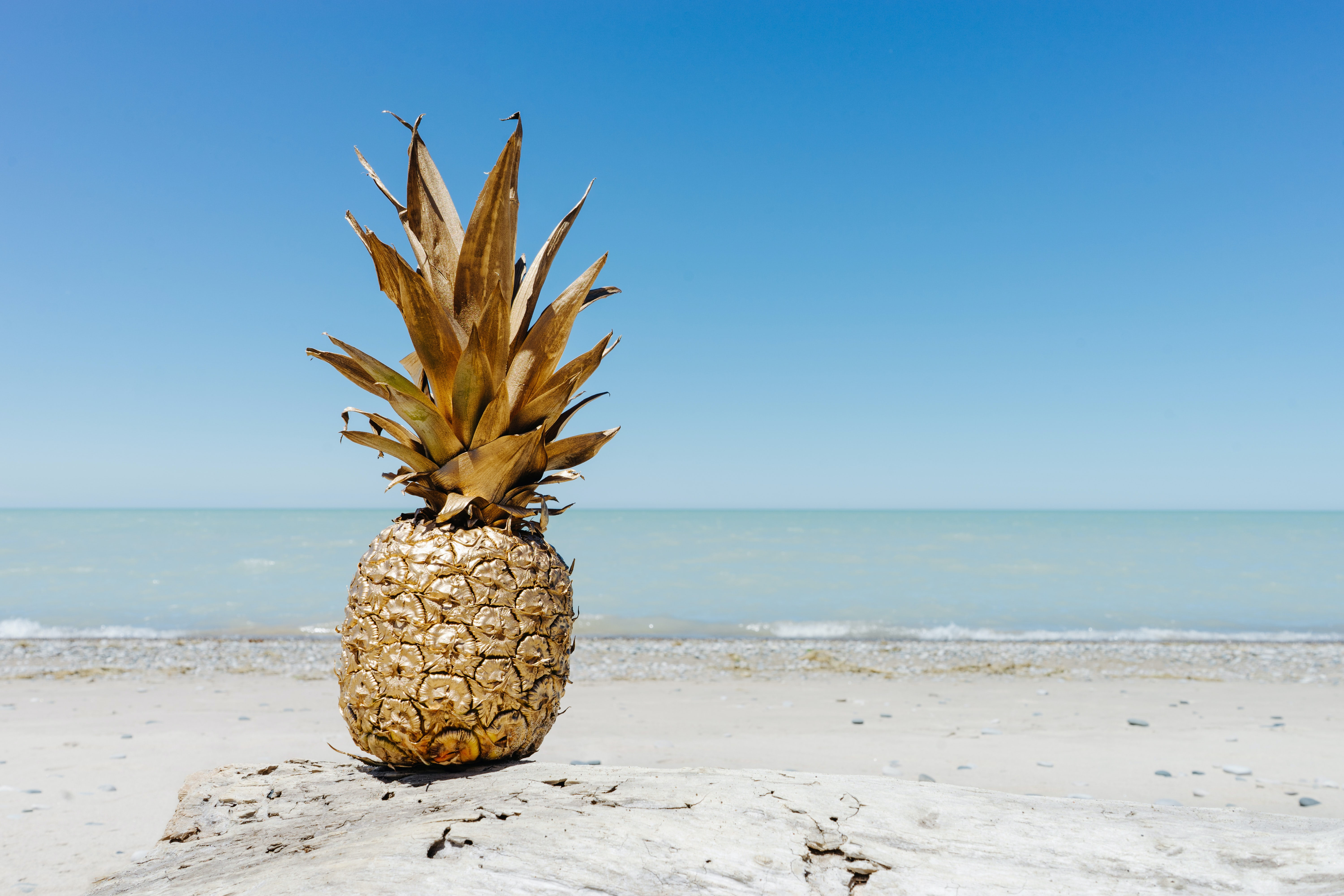 A single pineapple on the beach.