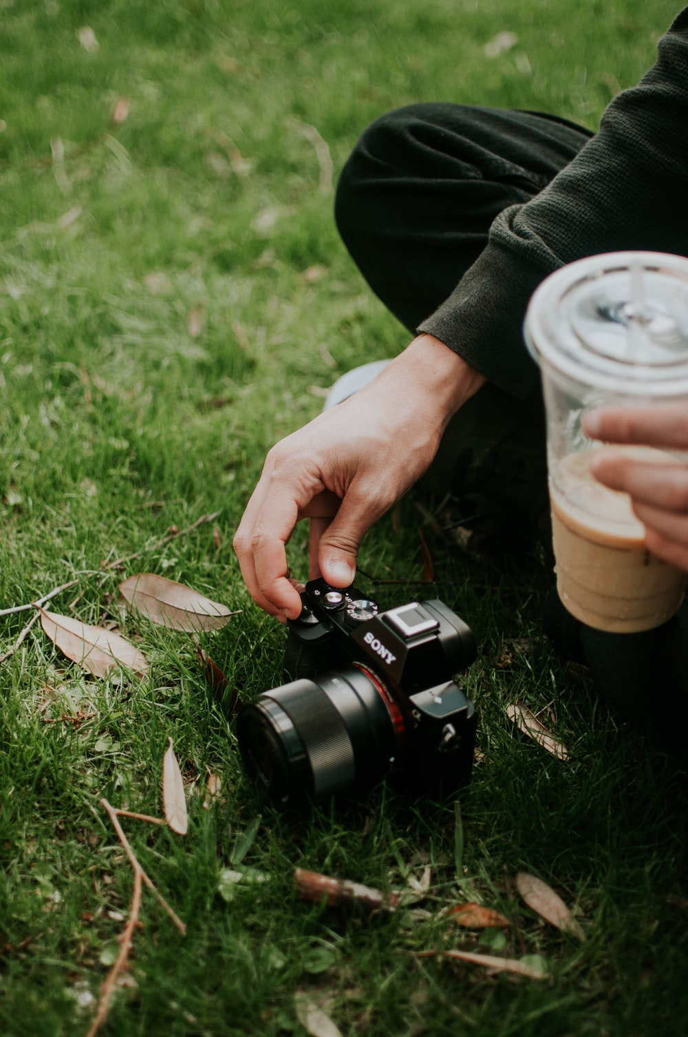 person using black Sony SLR camera on green grass field
