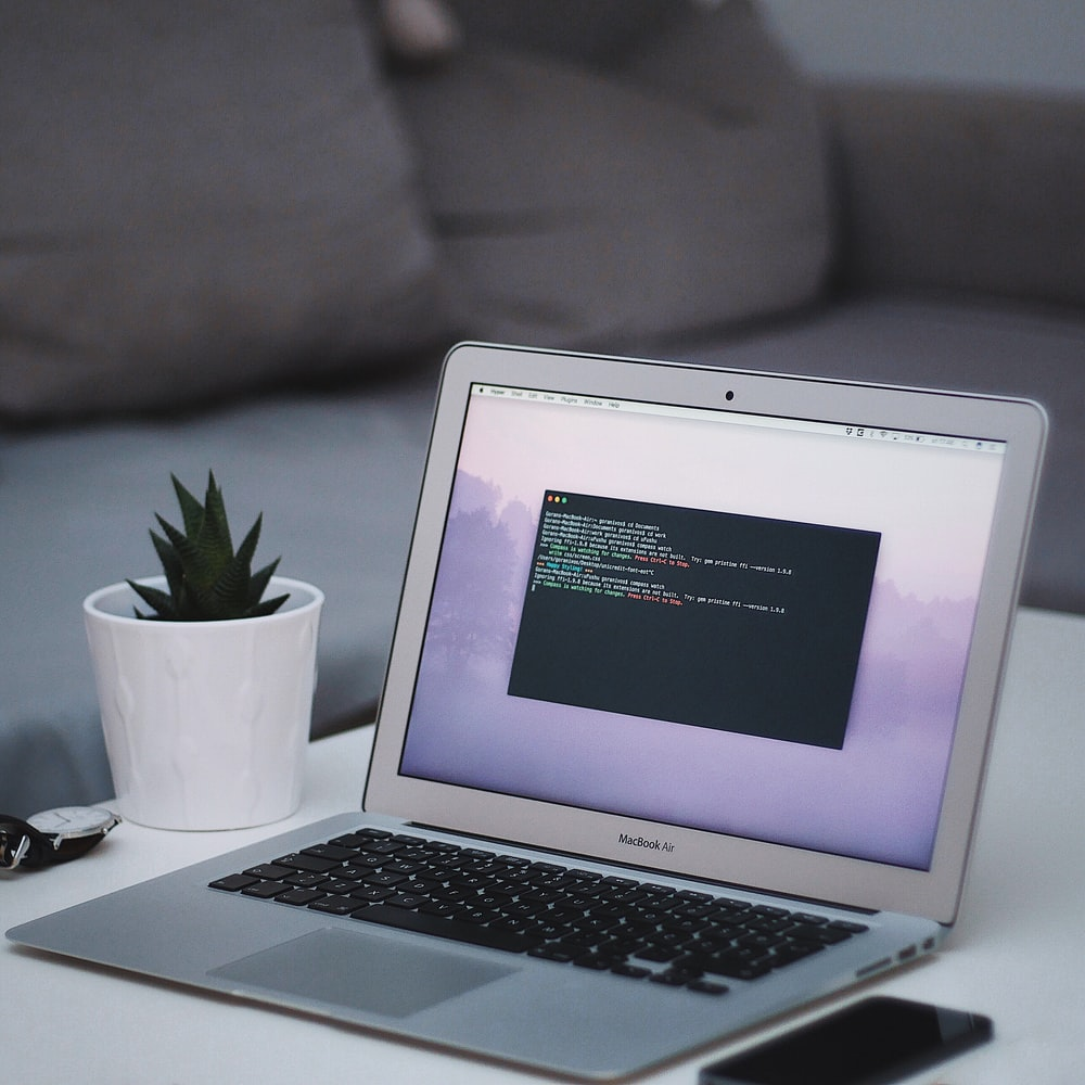 MacBook Air beside green leadf