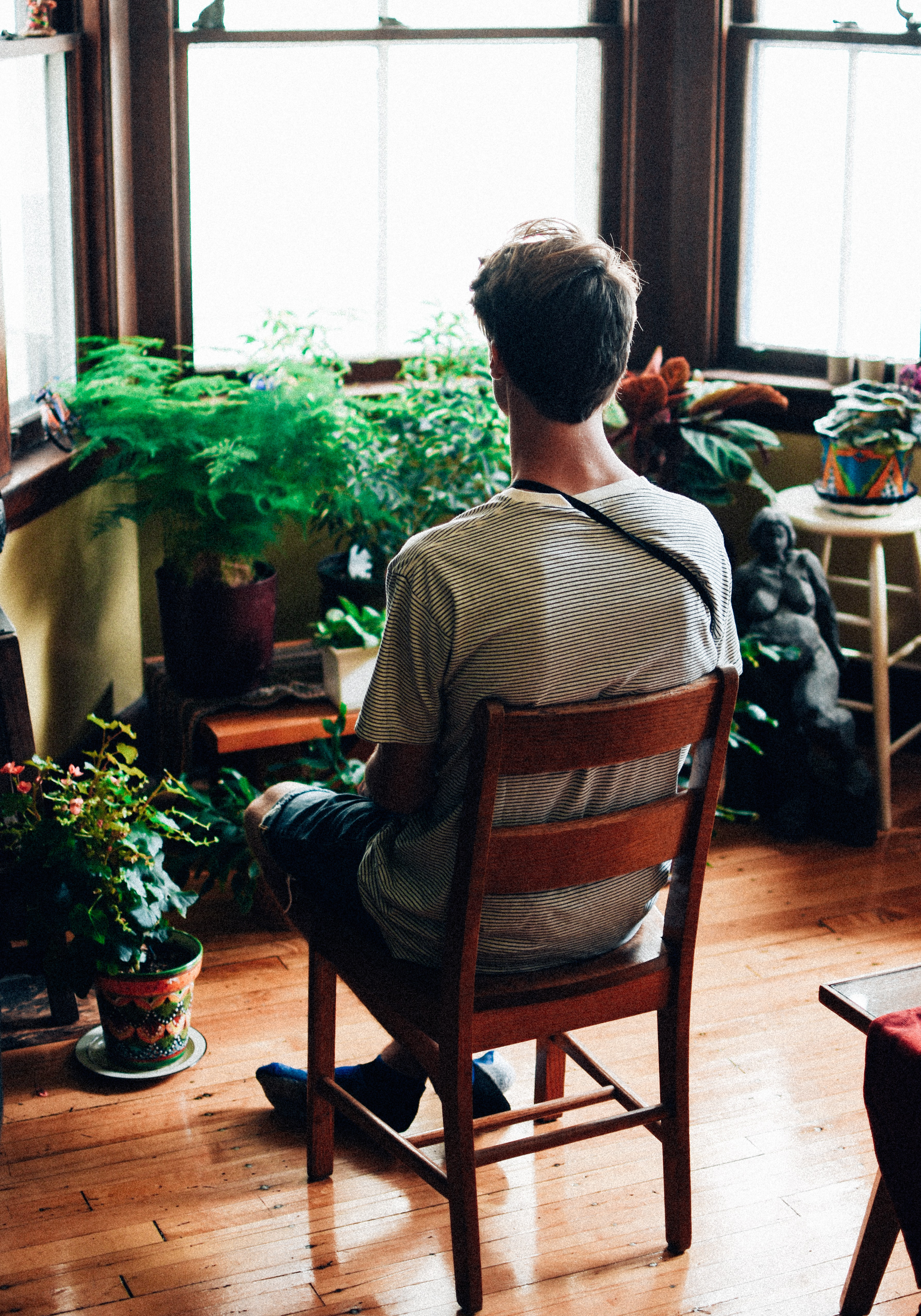 Person person sits with back to camera staring at house plants