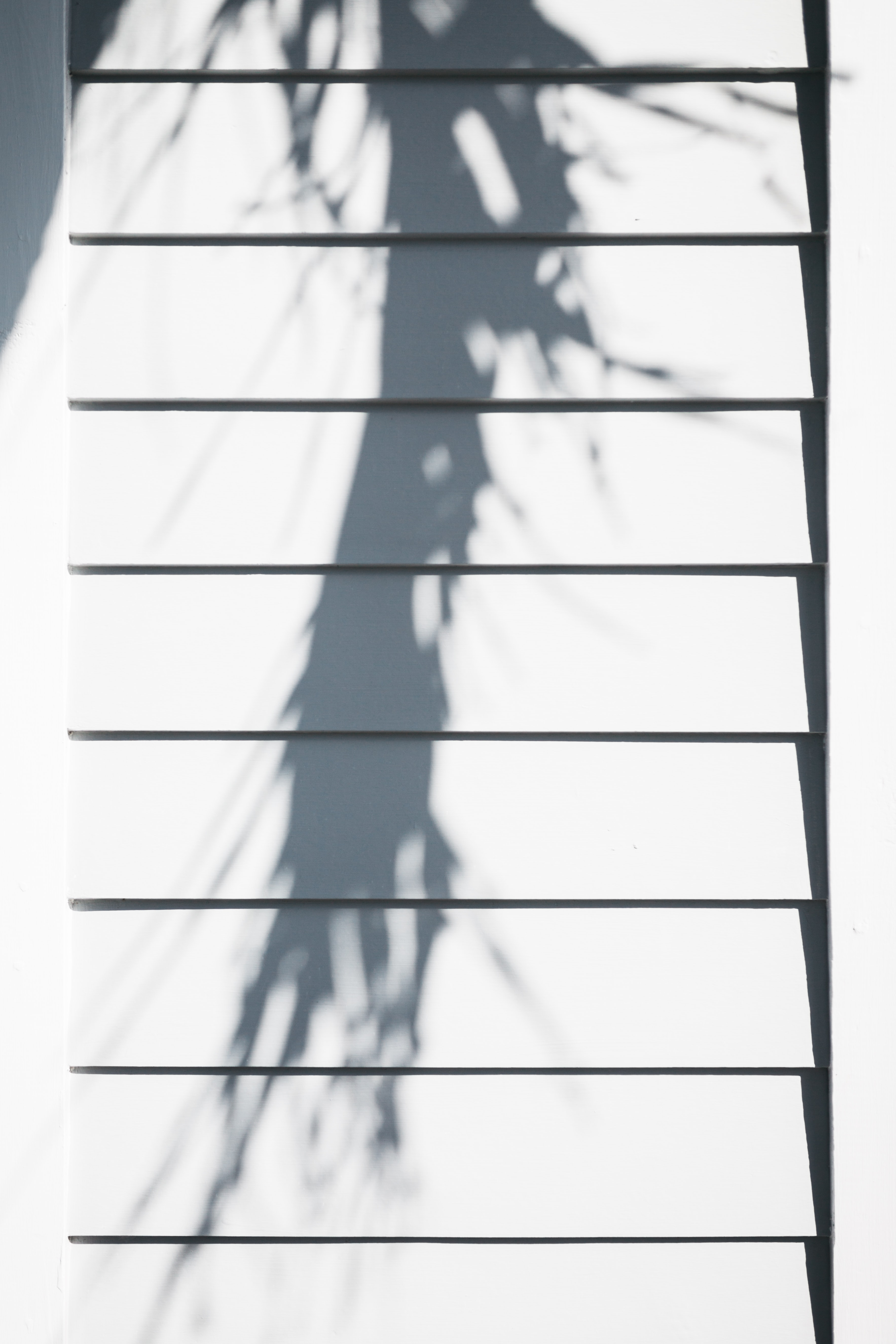 A long shadow on white wooden wall panels