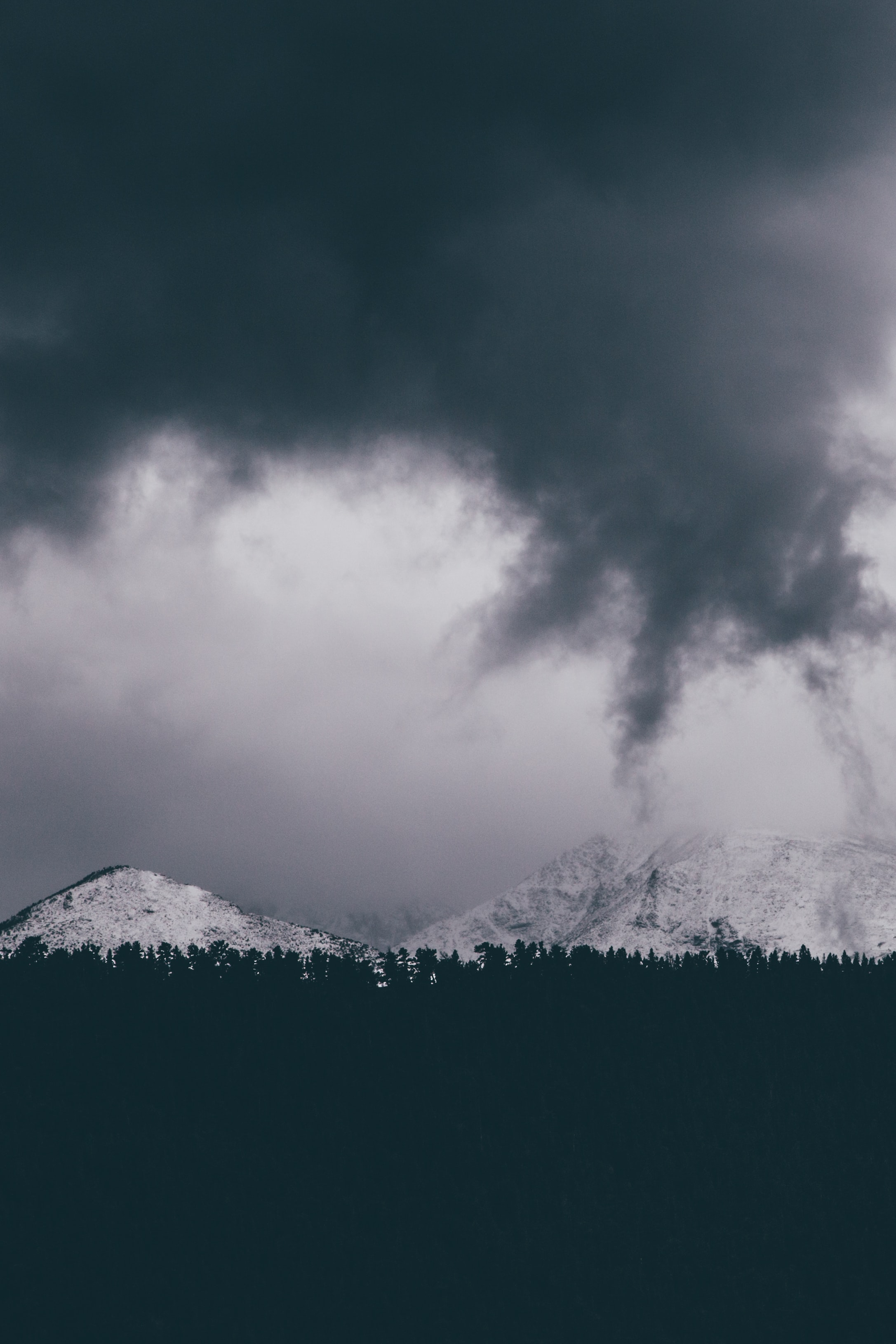 A bleak shot of white mountains over a dark treeline on a cloudy day