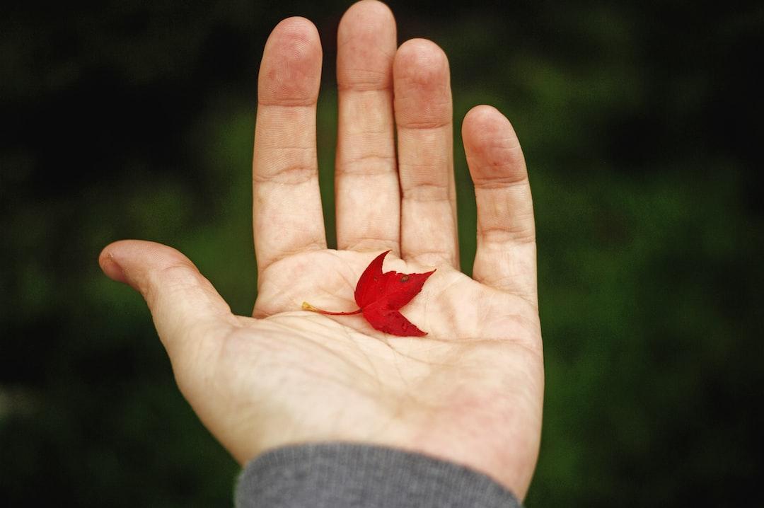 """""""Tiniest maple leaf"""""""