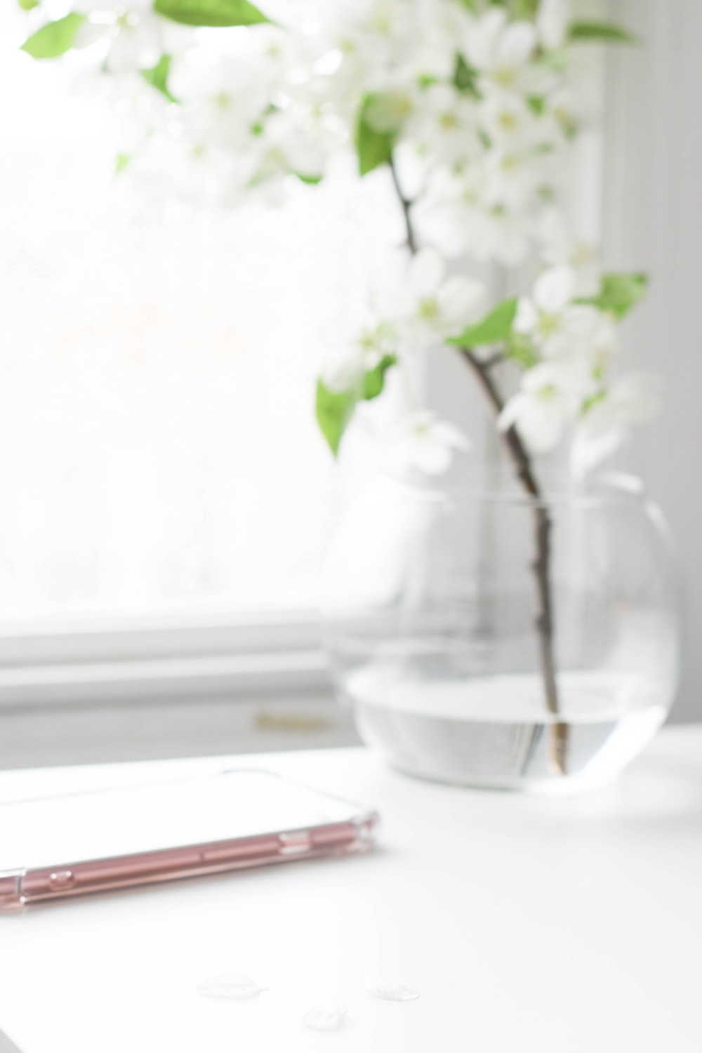 white flowers in clear glass vase on white table