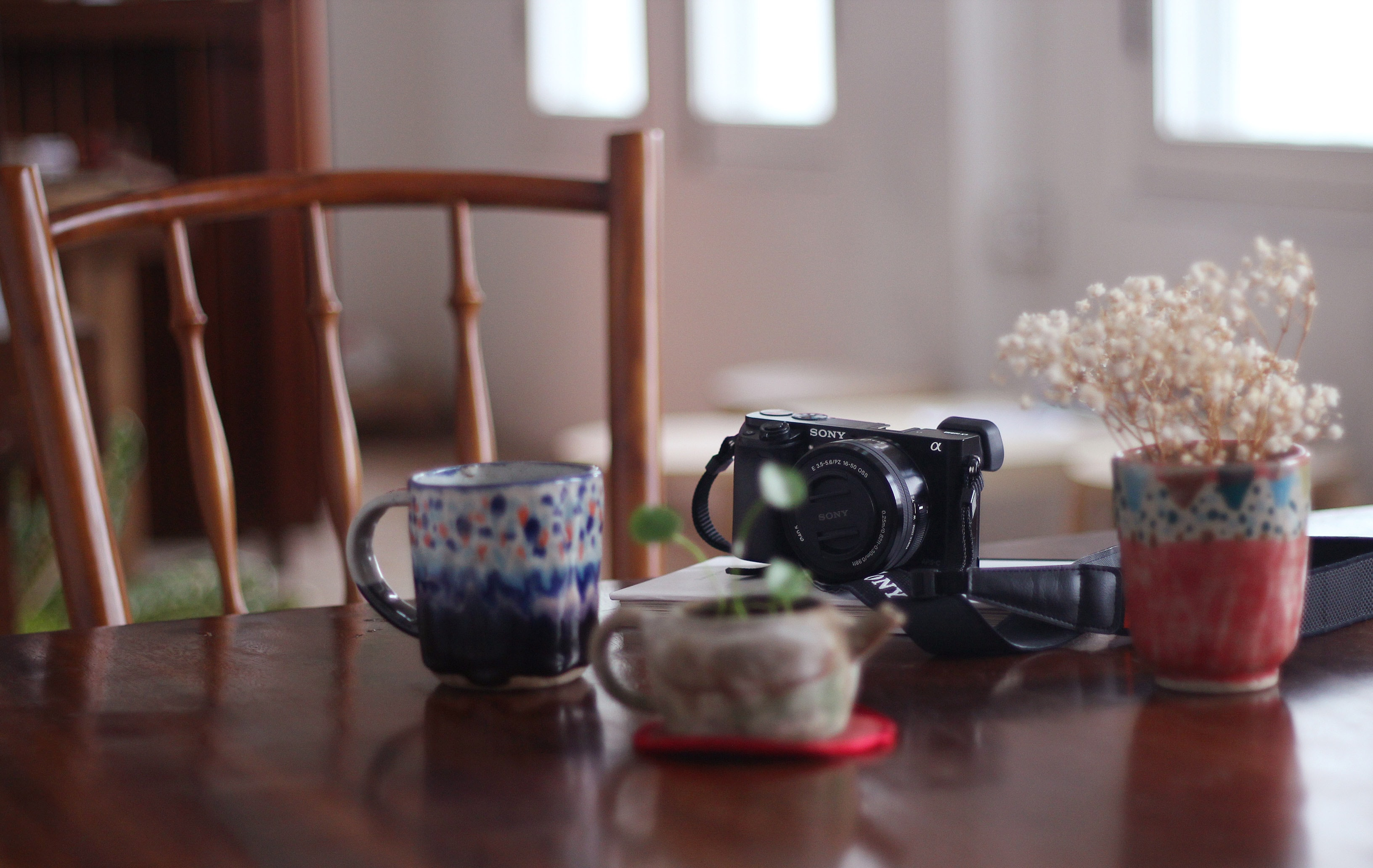 A polka dot mug, Sony camera, and plant on a table a Semasa Cafe And Shop