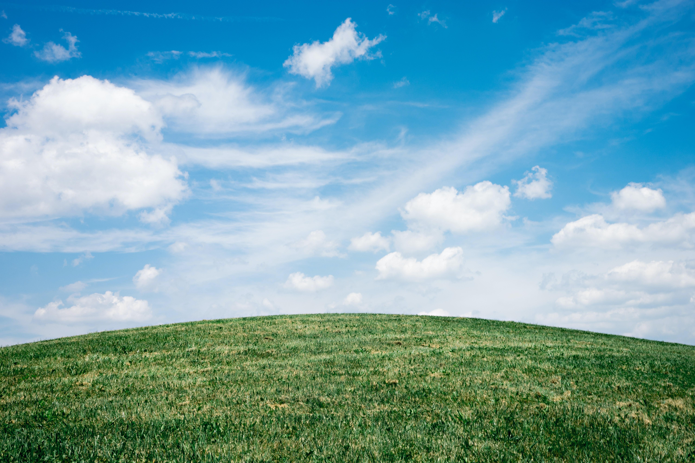 landscape of grass field under blue sky