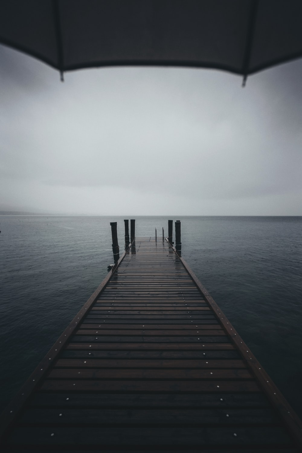brown wooden dock near body of water at daytime
