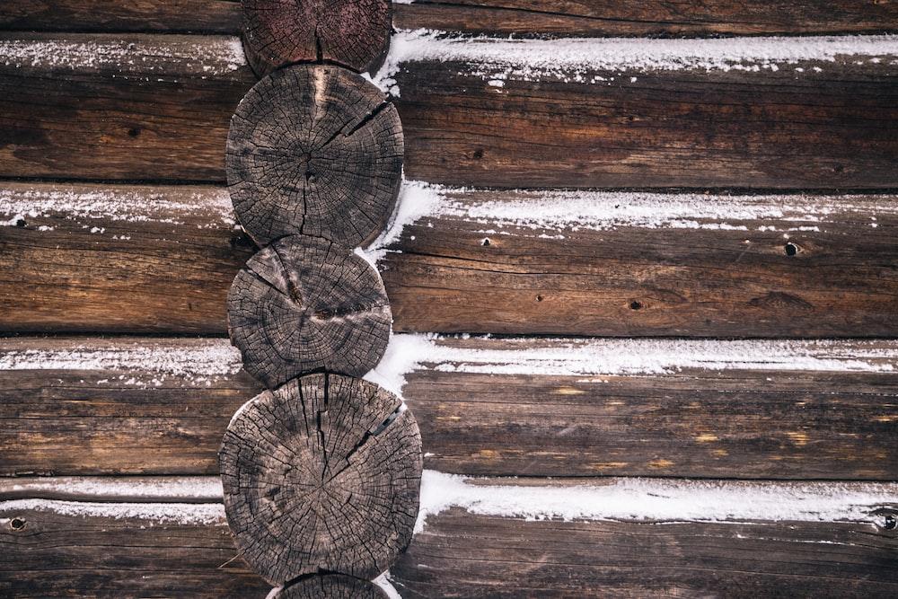 brown wooden tree log