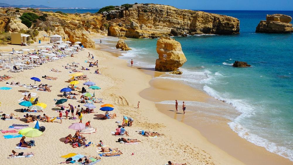 people sun bathing on beach