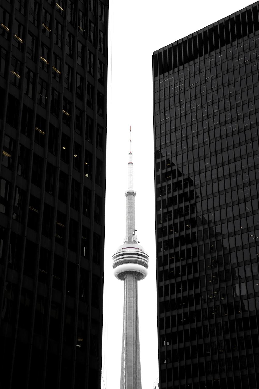 CN tower in between glass skyscrapers
