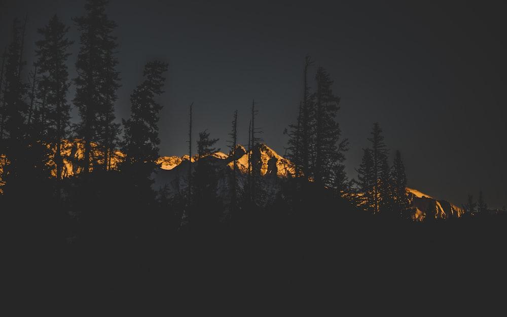 landscape photo on mountain alps