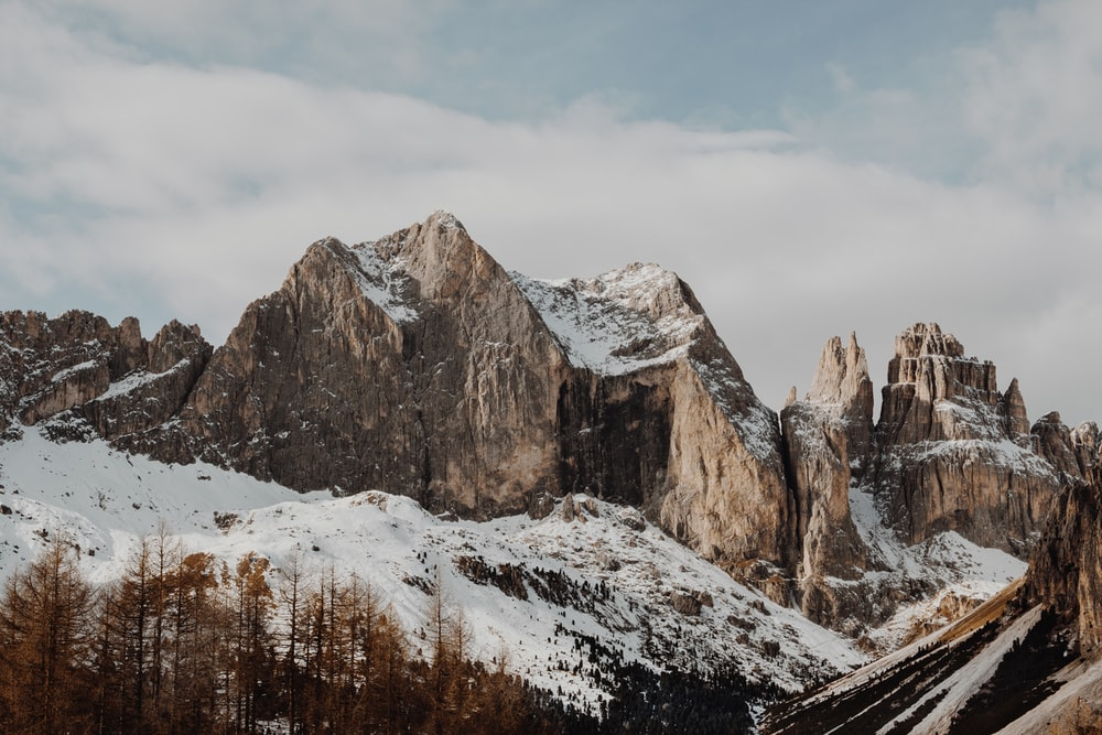 rocky mountains near pine trees