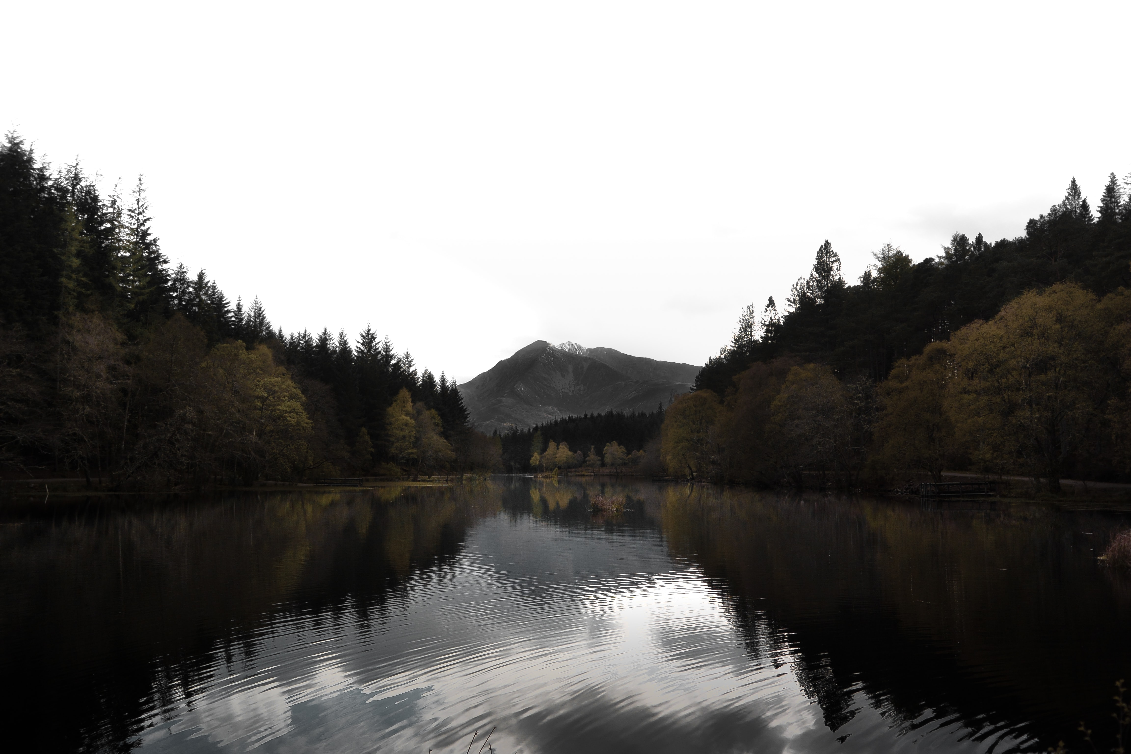 Looking down a lake with trees on both sides and a mountain in the backdrop.