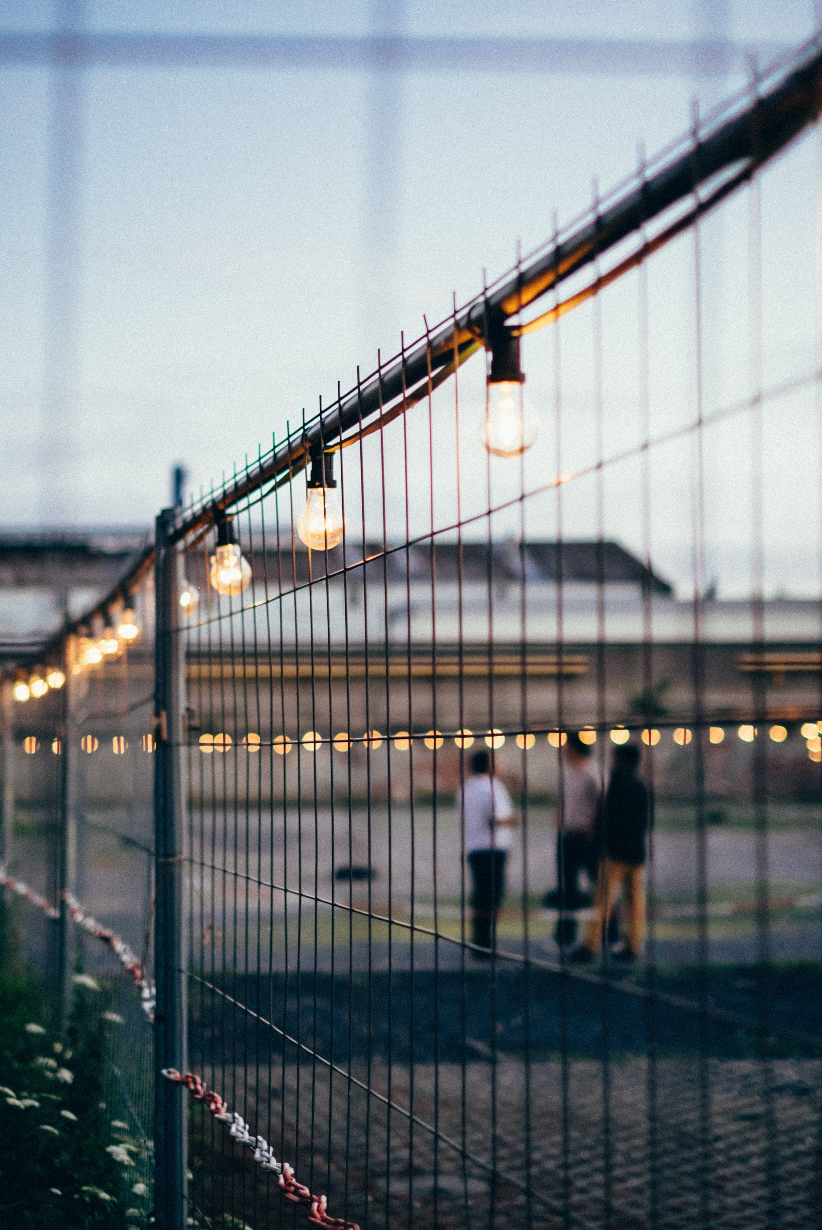 minimalist photography of gate with light bulbs string
