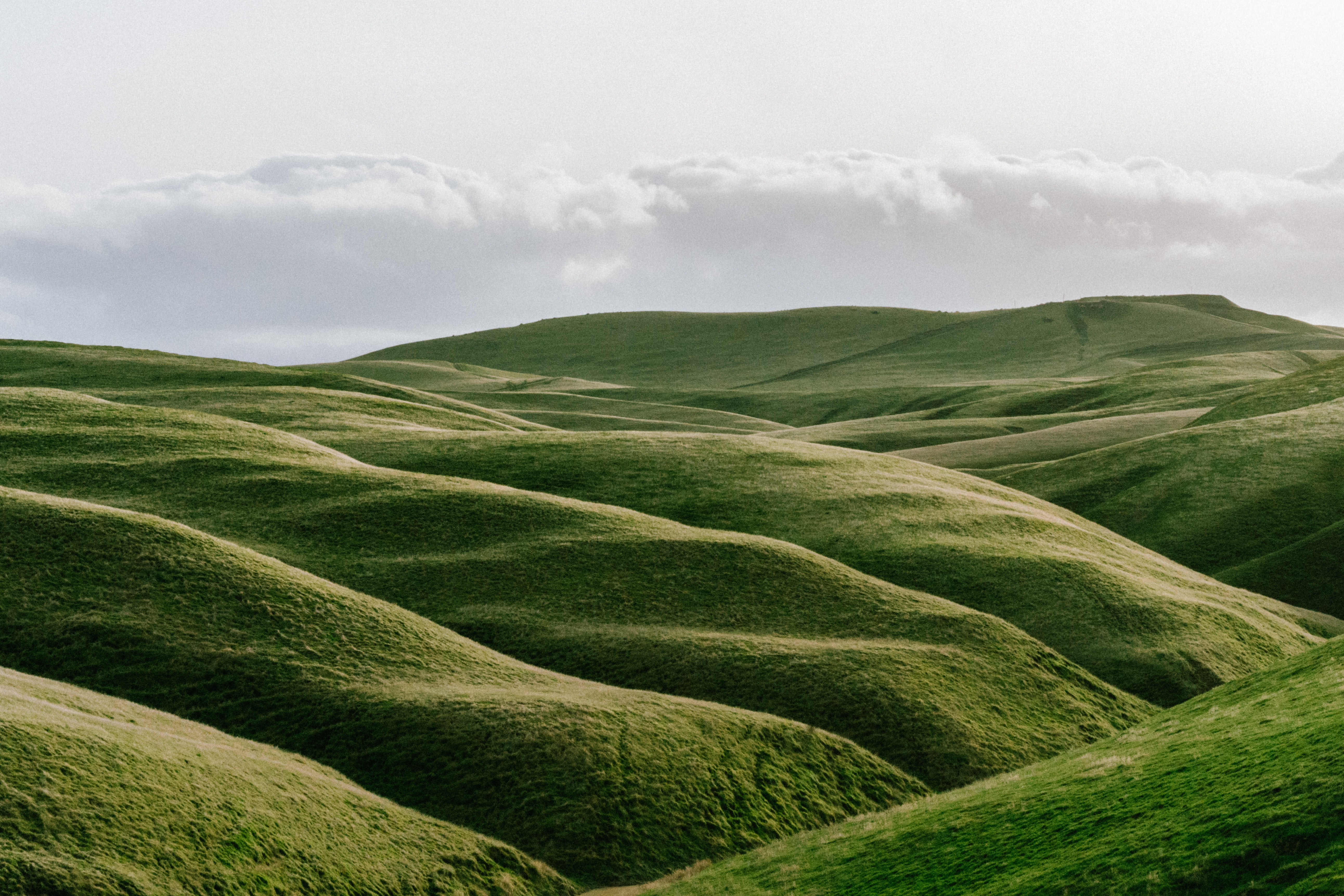 Green rolling hills of grass on a cloudy day