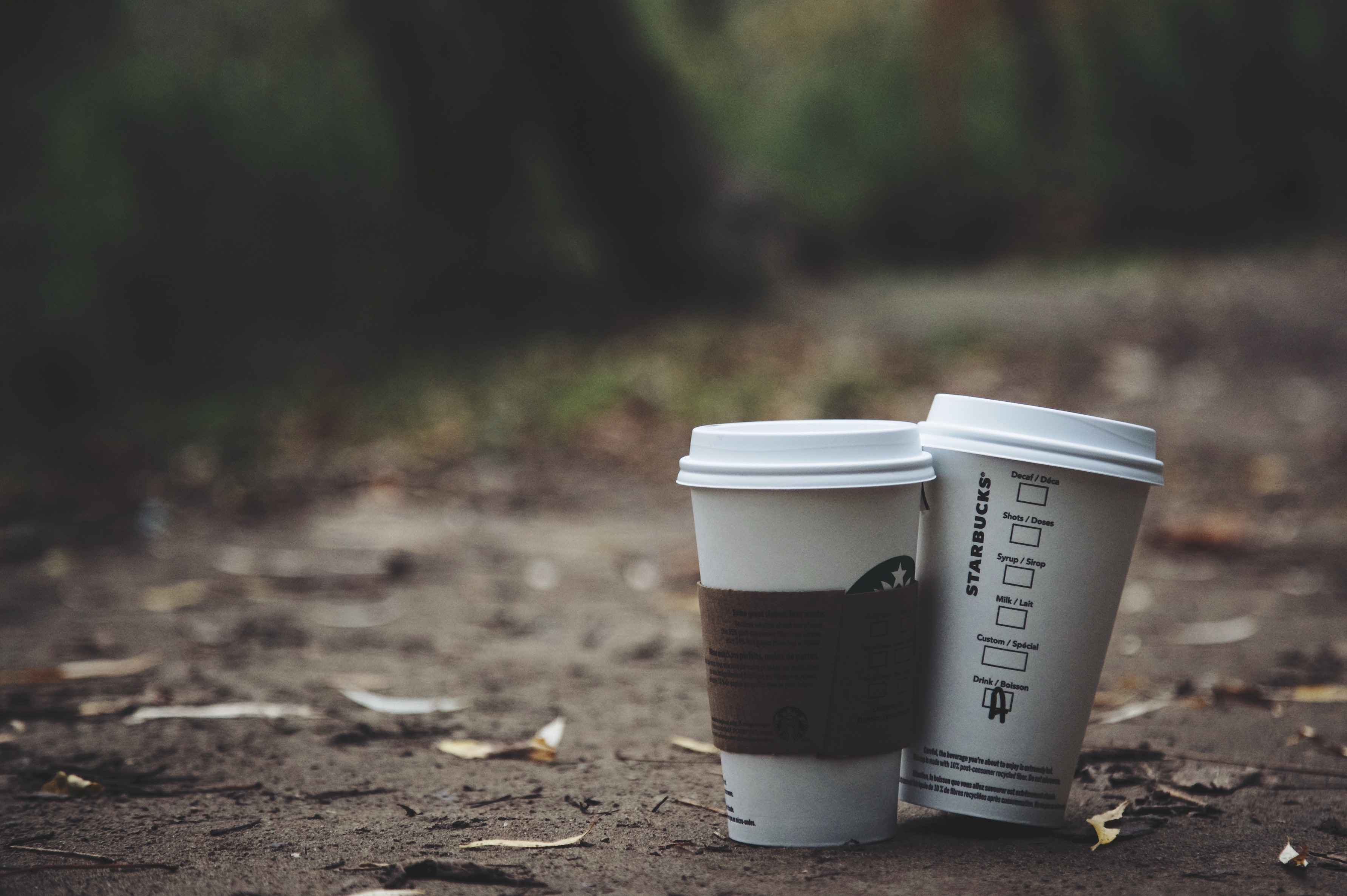 two white disposable cups place on brown soil
