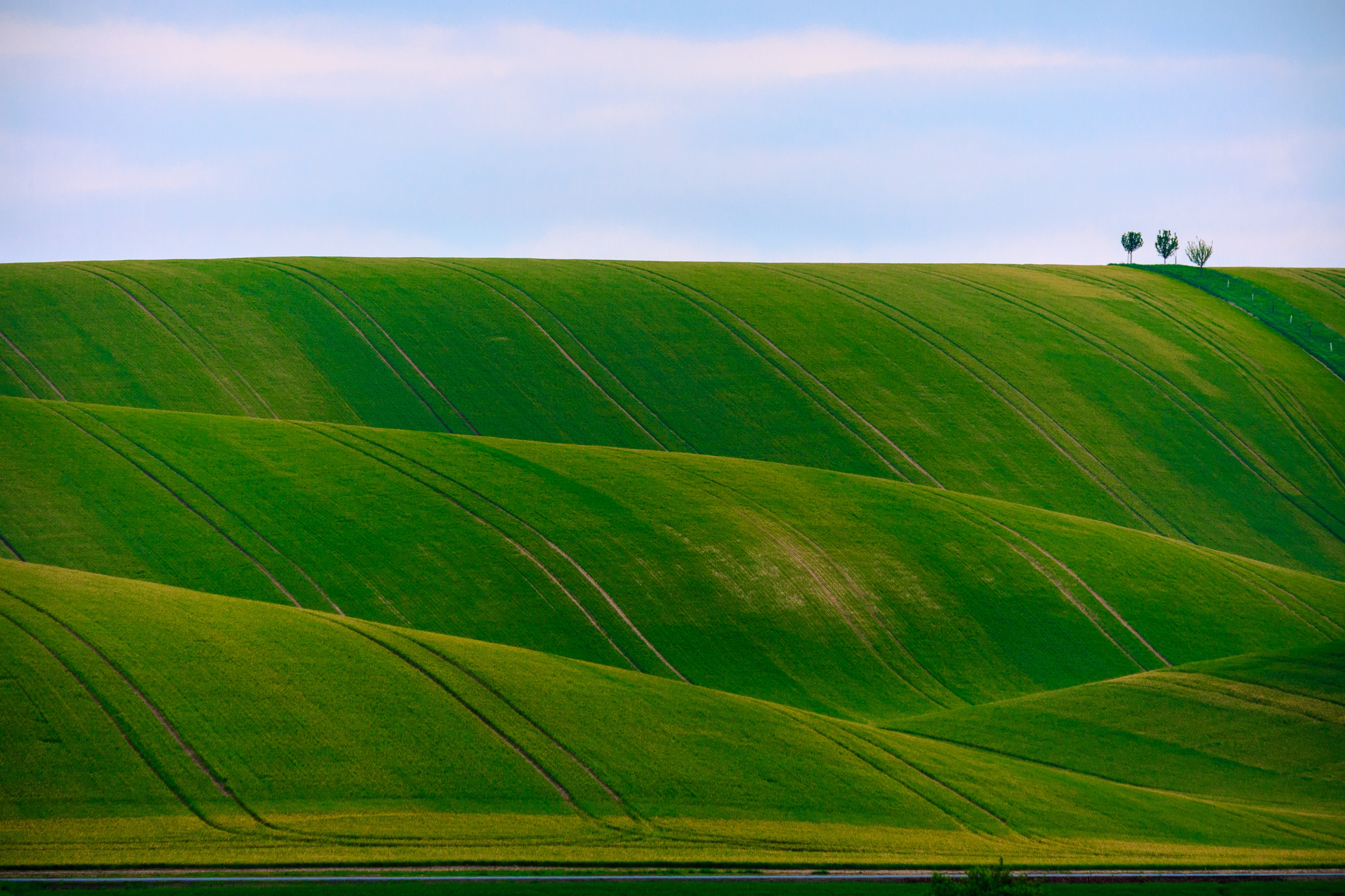 panorama photography of green hills