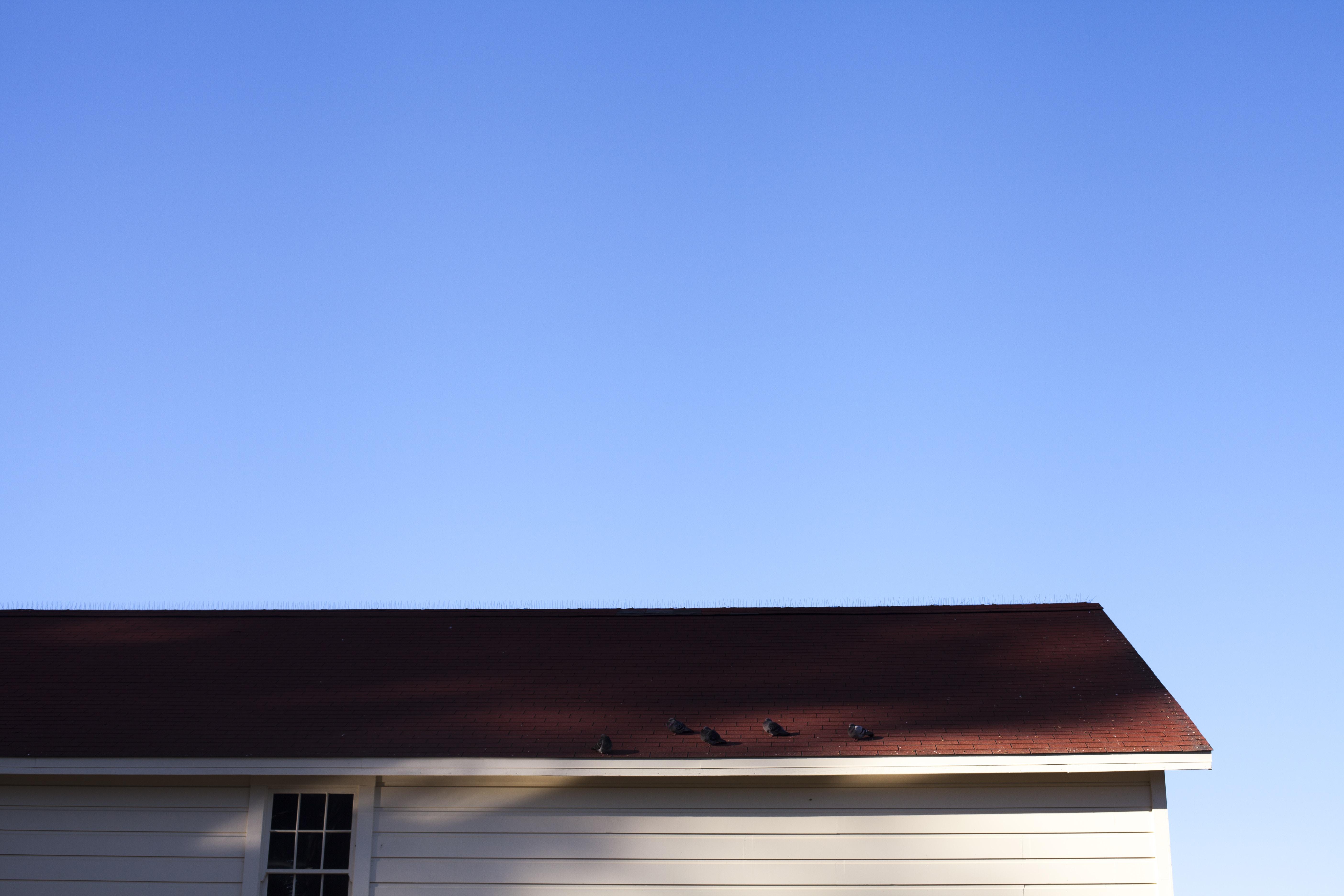 brown wooden roof