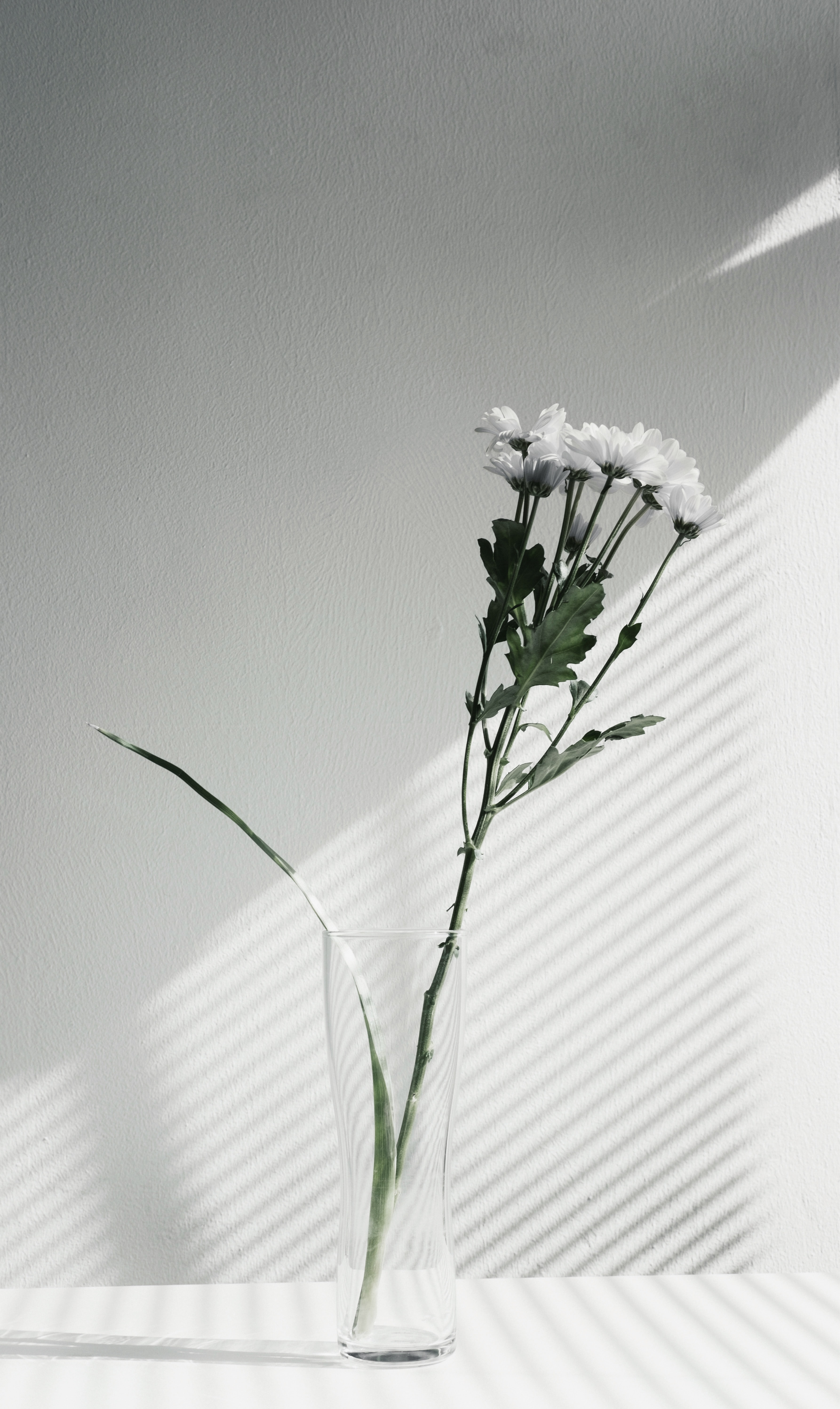 A desaturated shot of white flowers in a glass vase