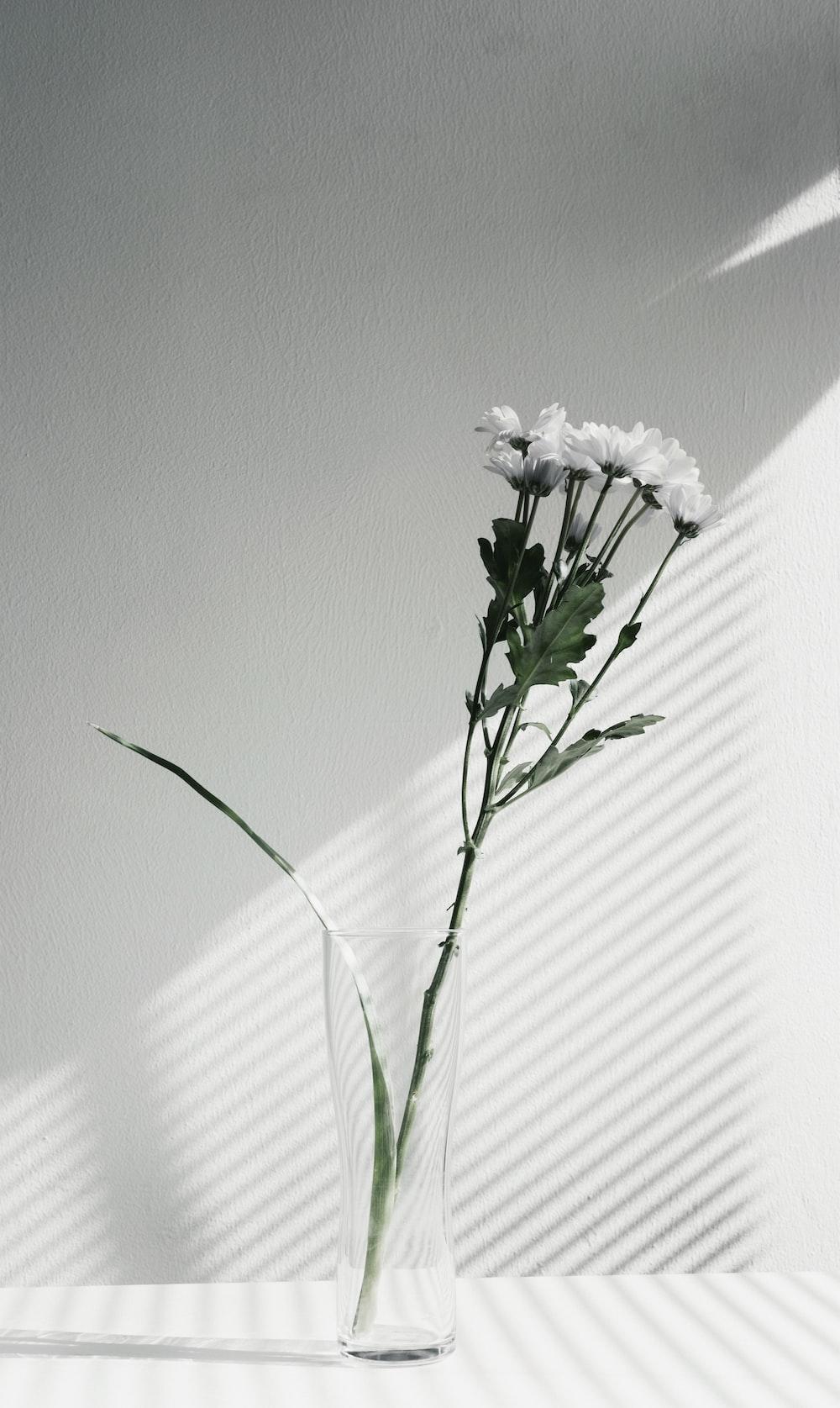 white petaled flower centerpiece