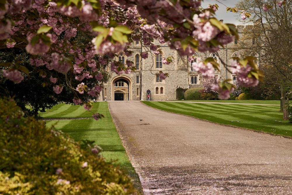 empty pathway to castle