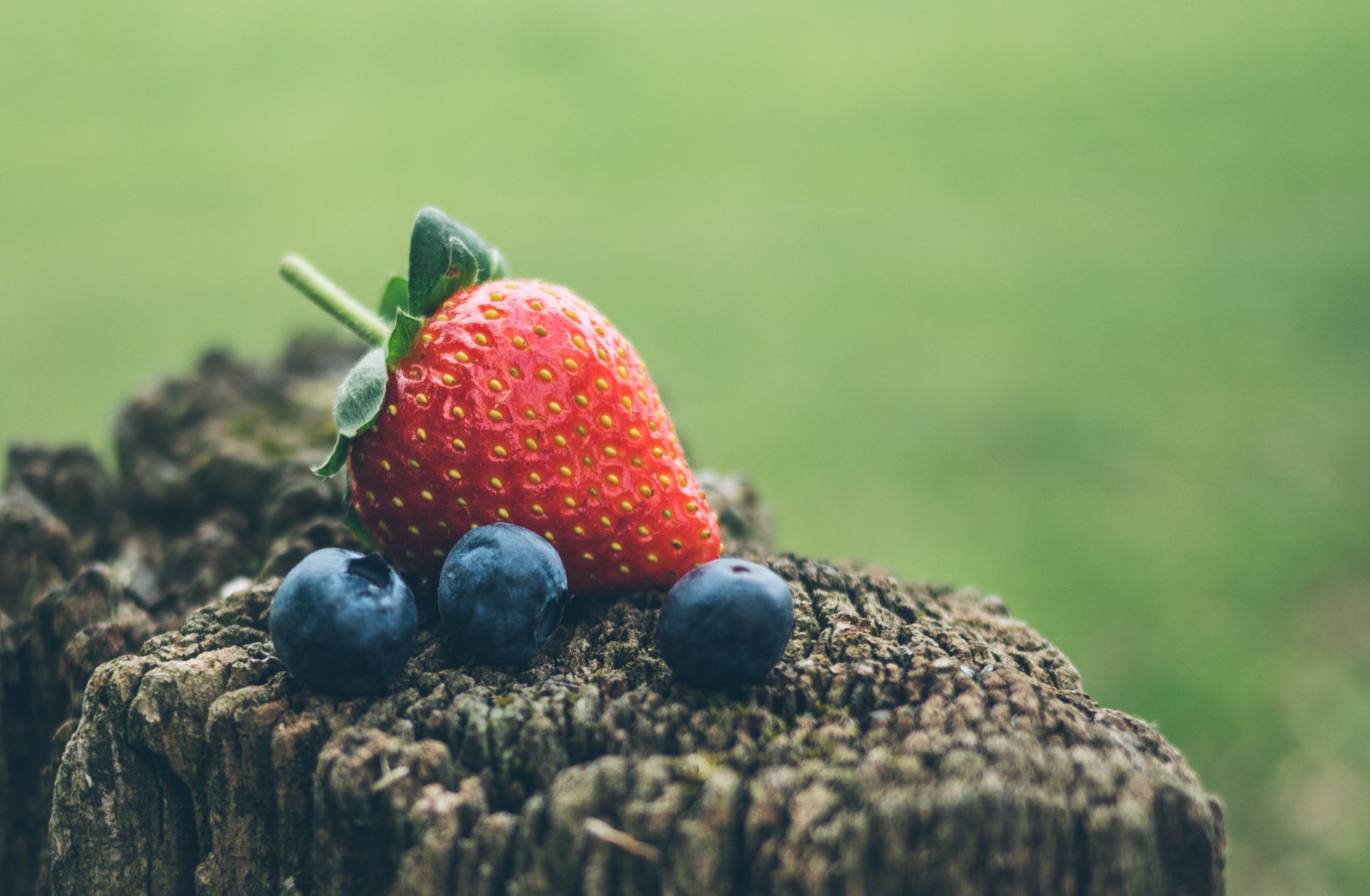 A strawberry and three blueberries balanced on a wooden stump