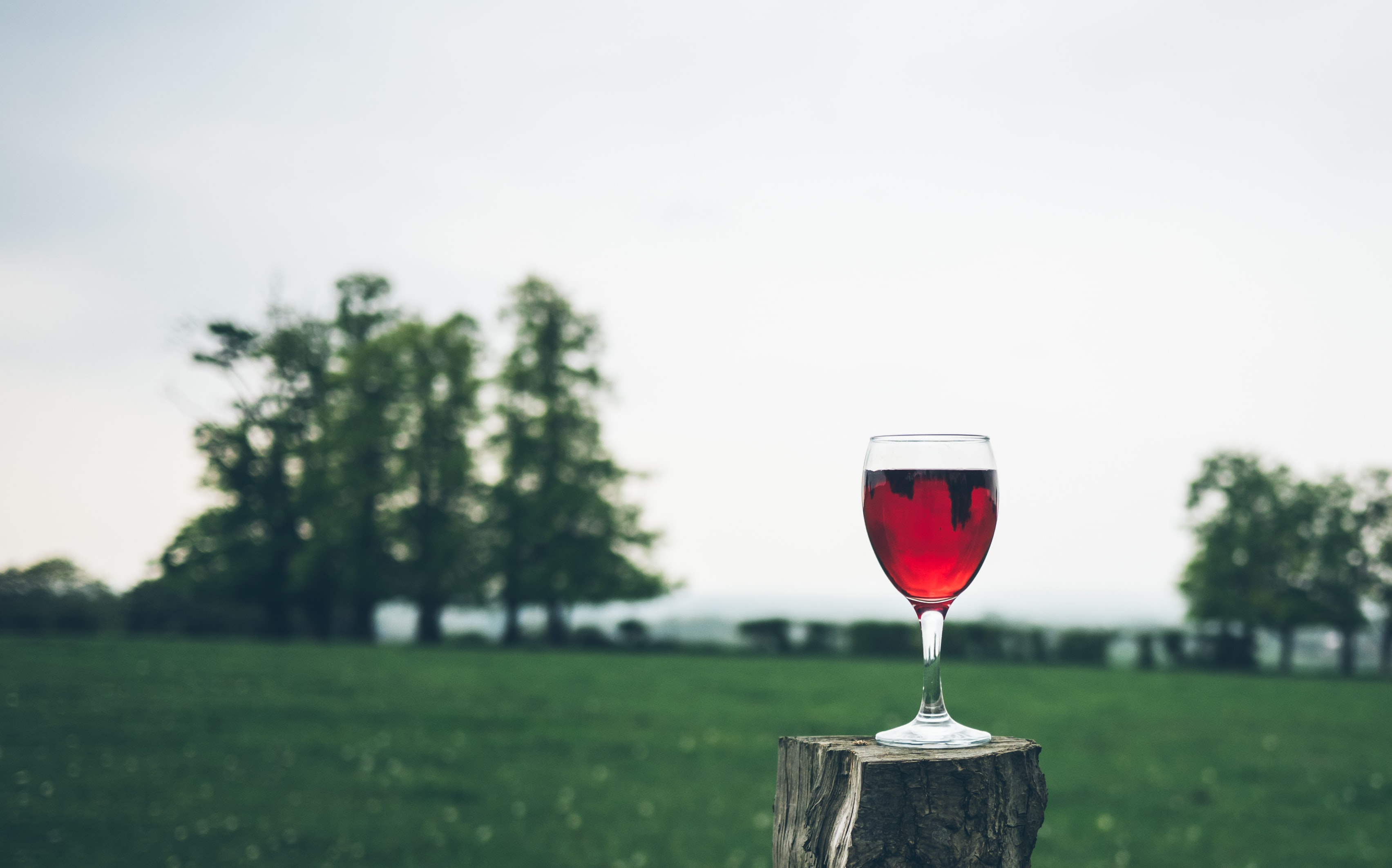 A glass of red wine on a small tree stump with a green field in the background