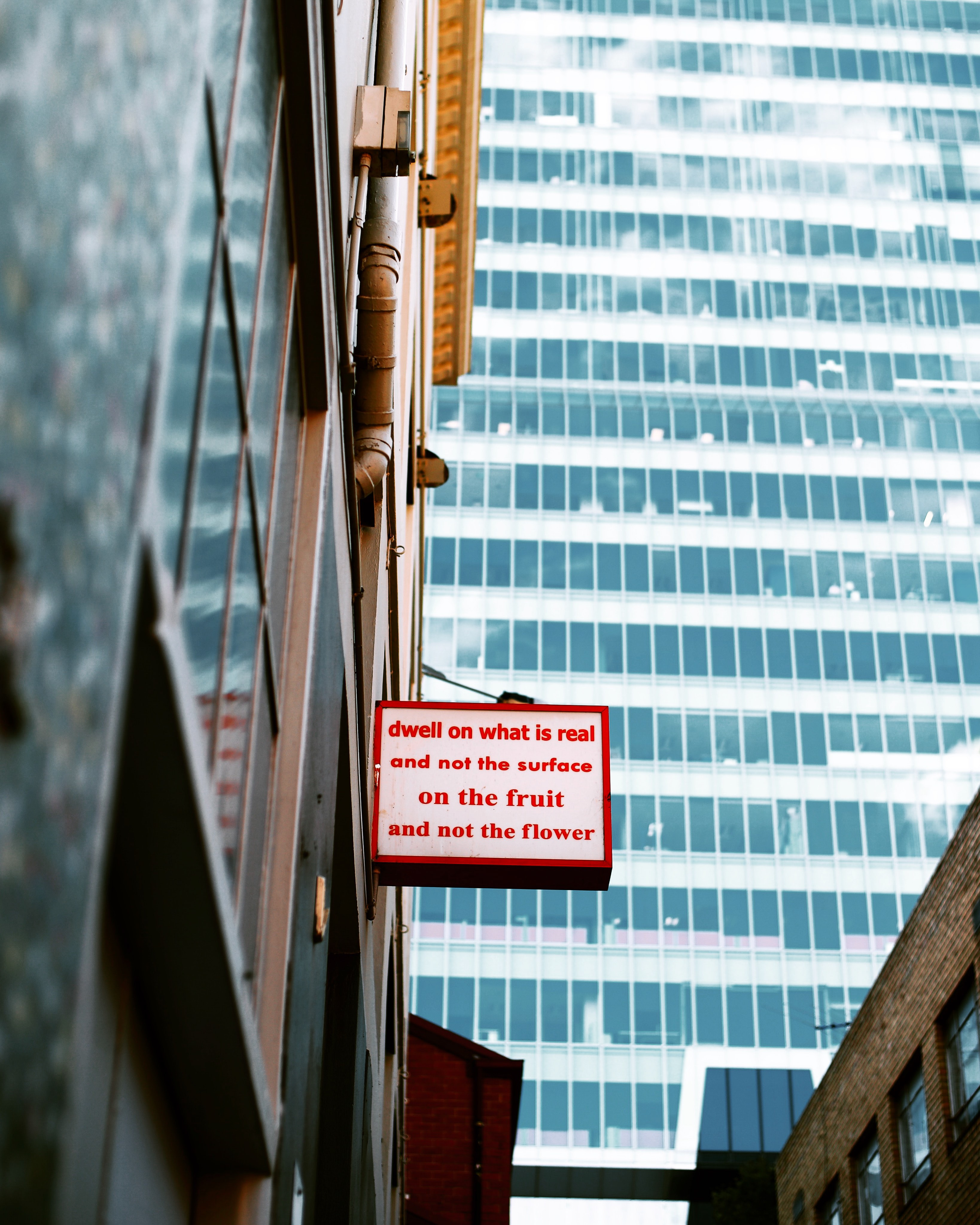 wihte and red sign board near mirror wall building