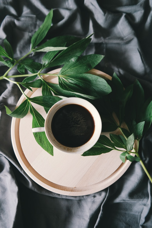 white ceramic mug beside green leaves