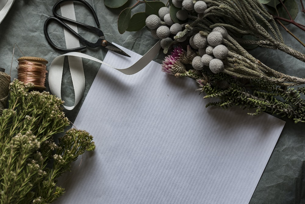 flay lay photo of paper, plants and scissors