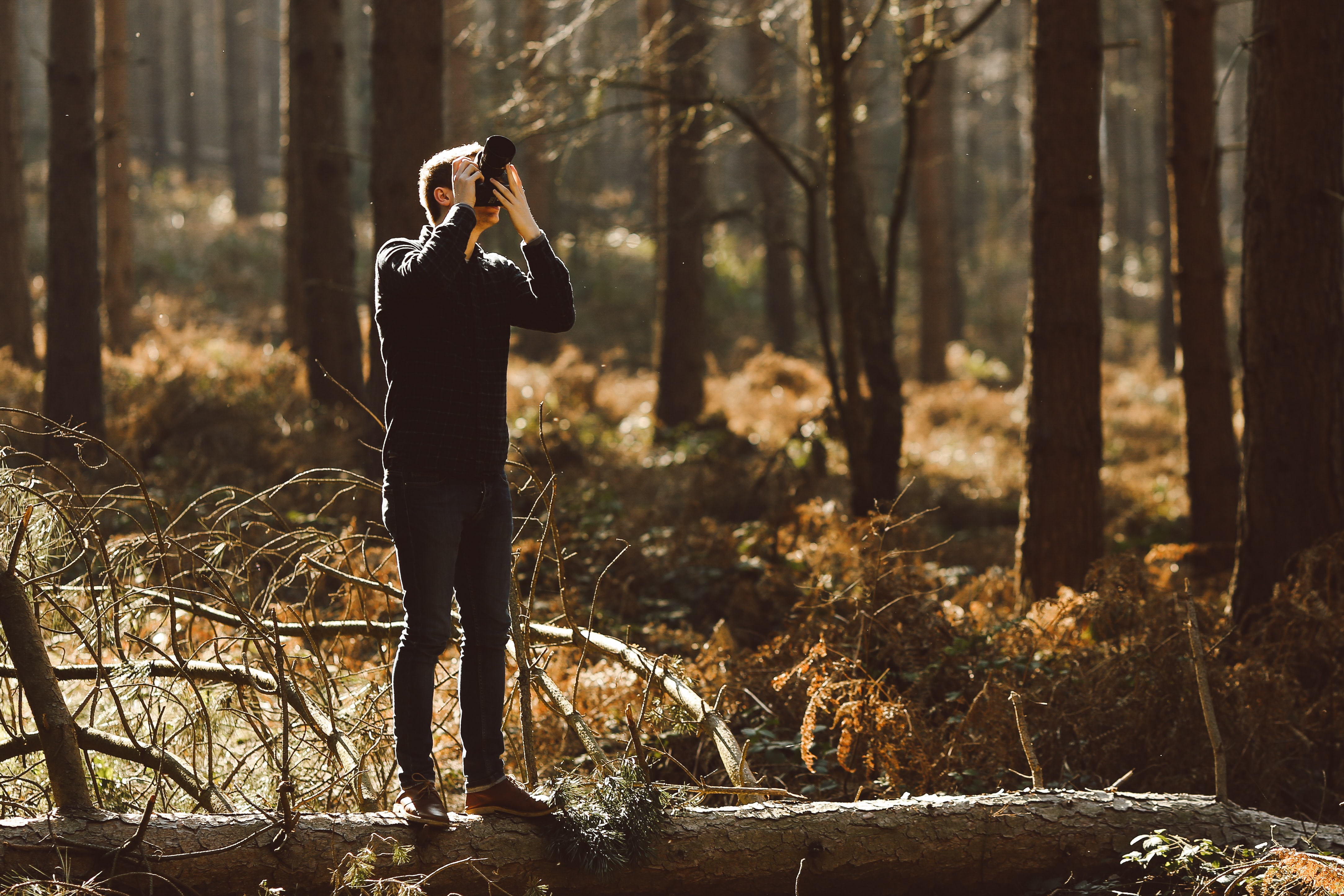 A person in dark clothing stands on a fallen tree in a forest taking a photo