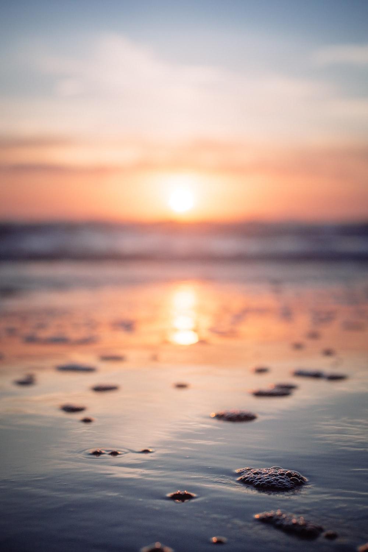 reflection of sunset on beachshore