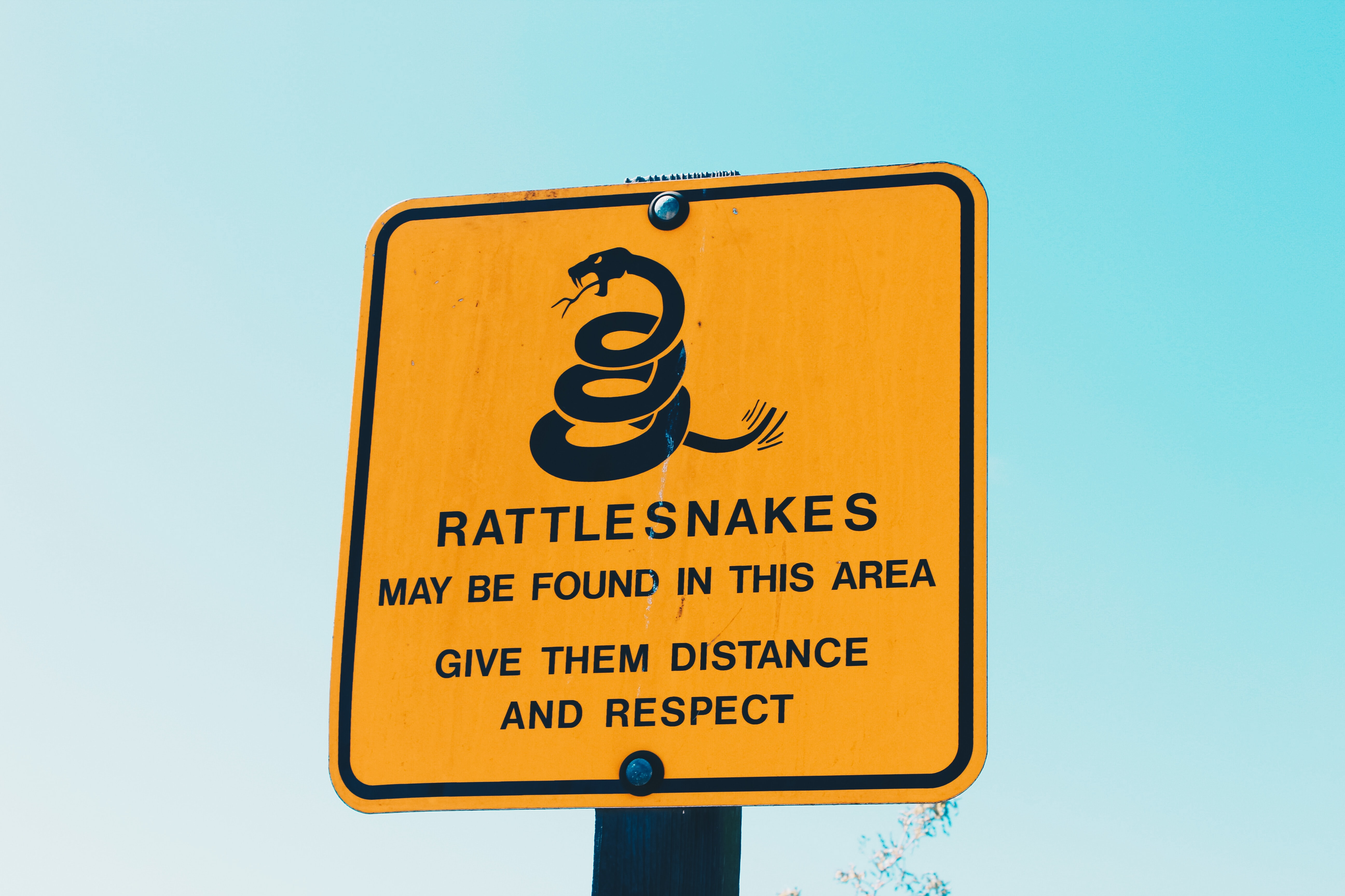 Rattlesnakes may be found in this area give them distance and respect signage