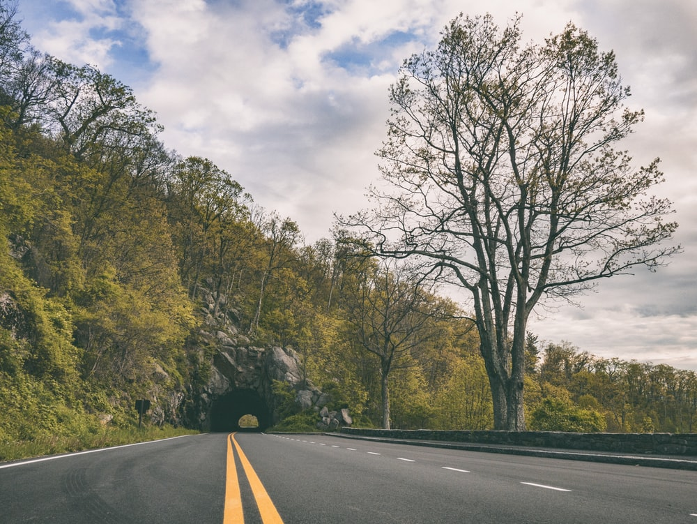 concrete road leading to a mountain tunnel covered in green trees during day