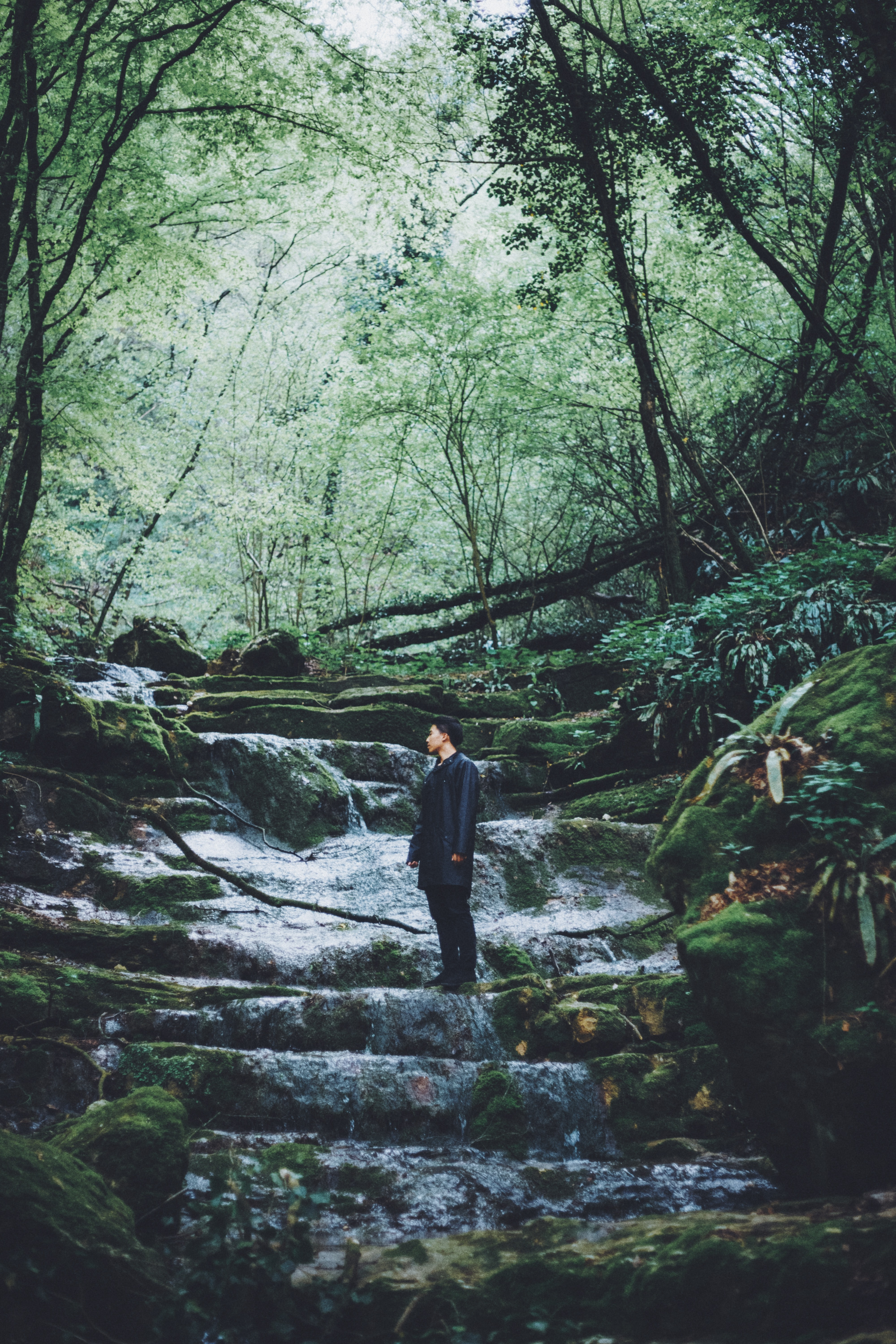 A young man standing on a rocky bed of a cascading stream in a forest