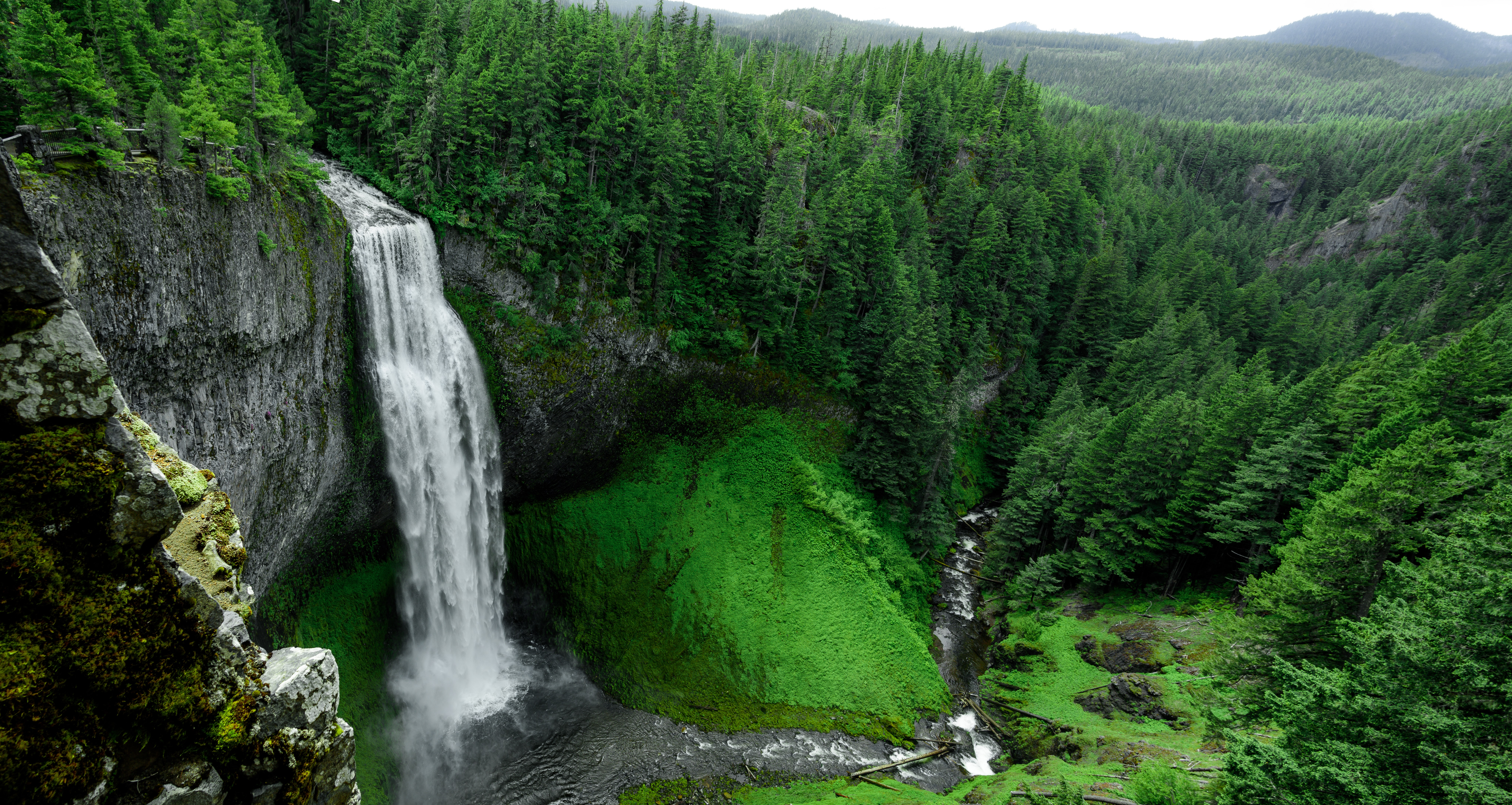 A waterfall tumbling down into a ravine in a green forest