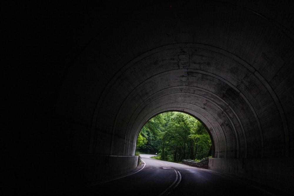 tunnel near trees at daytime