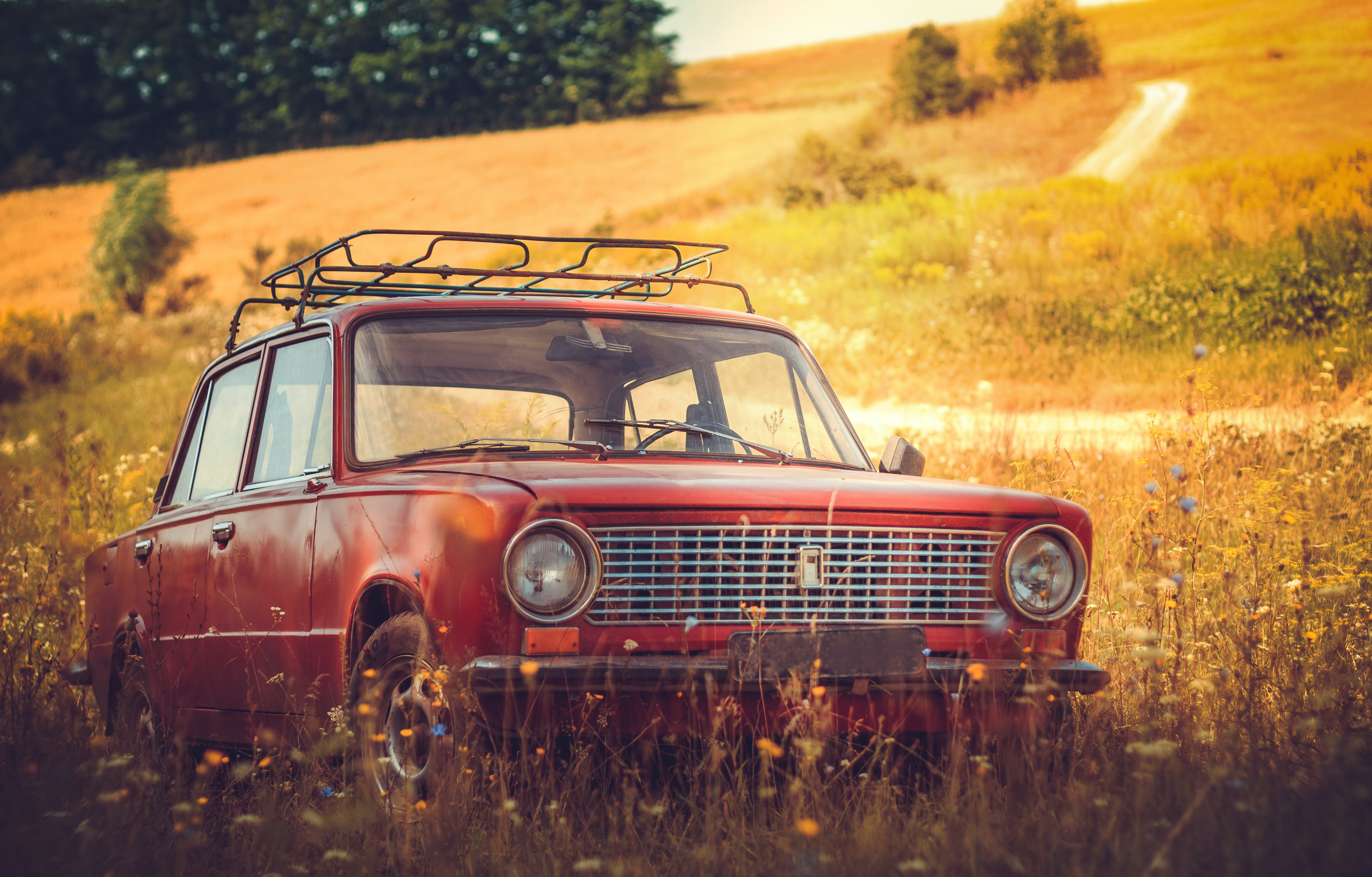 classic red car on grass field