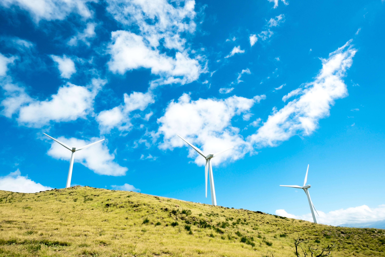 Windmills in a green grassy hillside