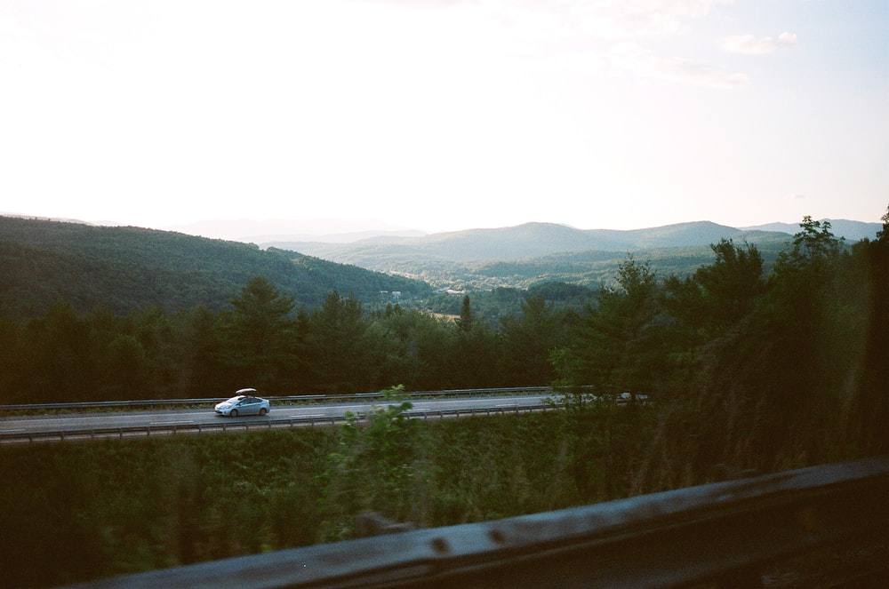 car riding on road between trees near mountain range