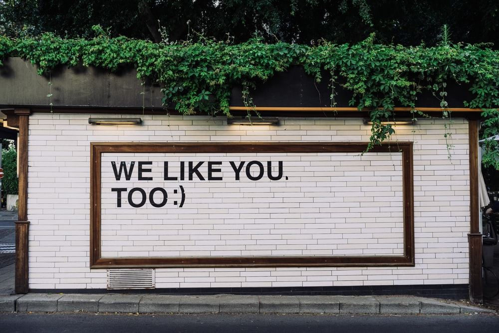 We like you too quotes on wall