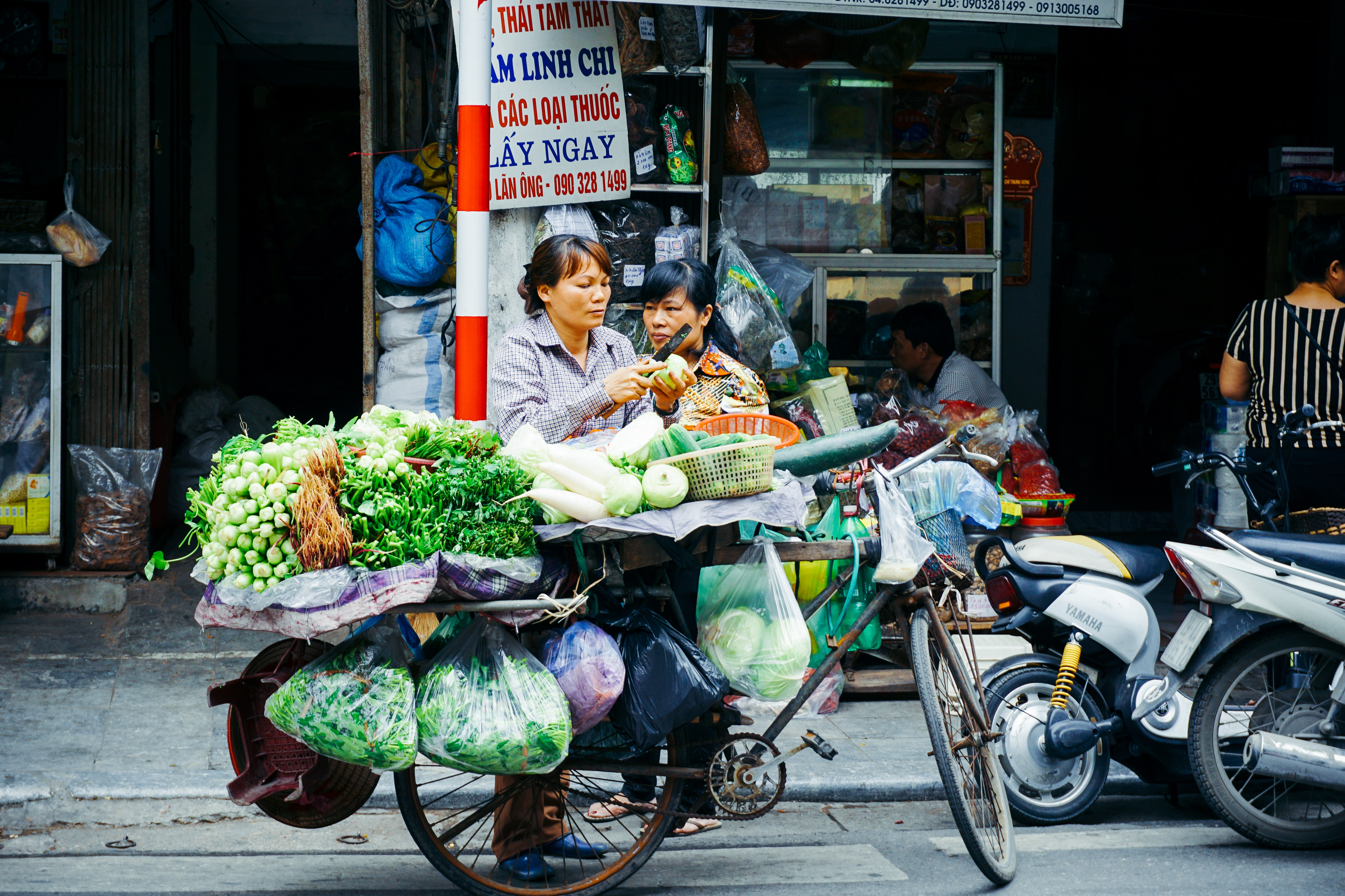 Two women near an old bicycle heavily loaded with various green vegetables